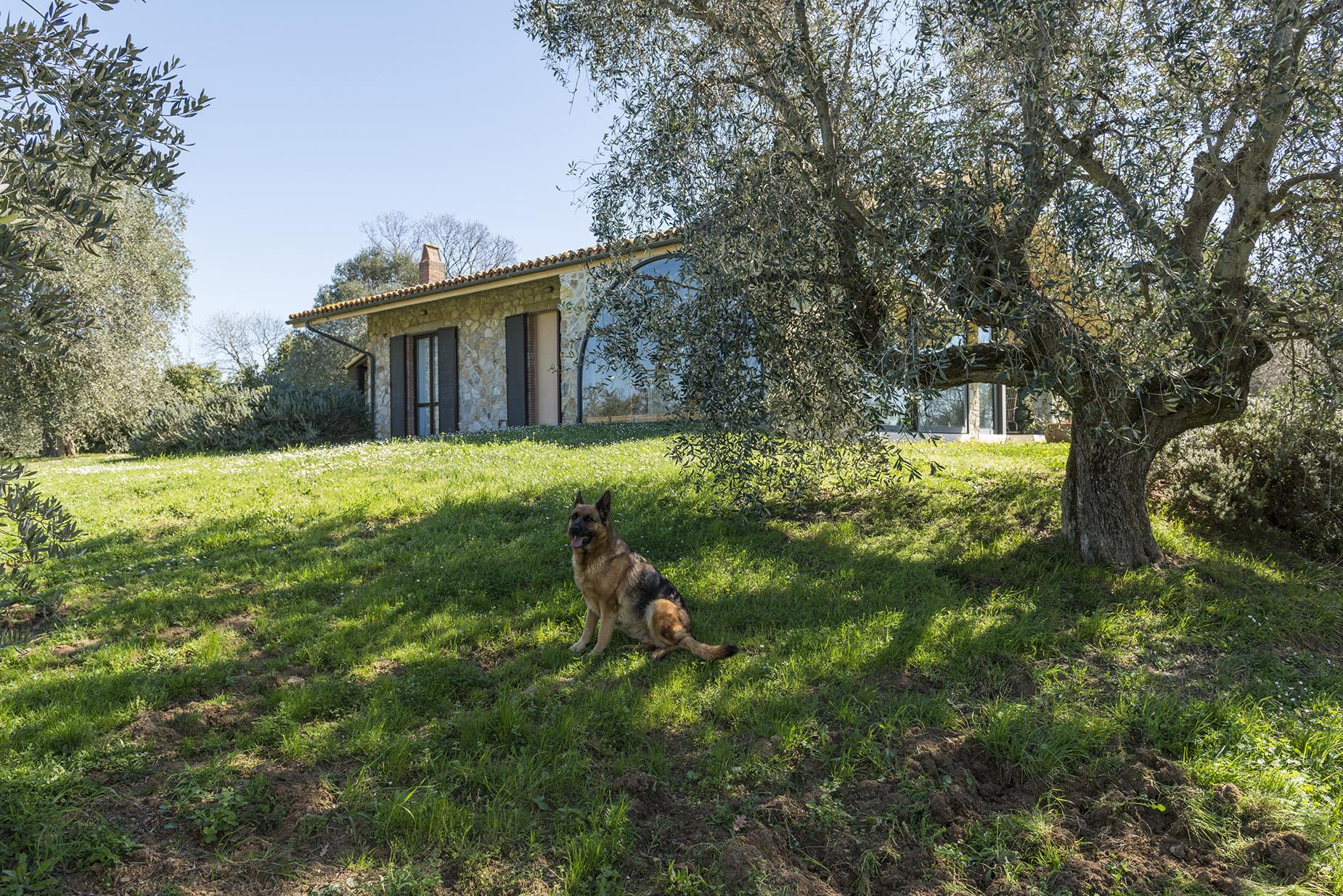 Villa in Vendita a Magliano In Toscana: 5 locali, 141 mq - Foto 7