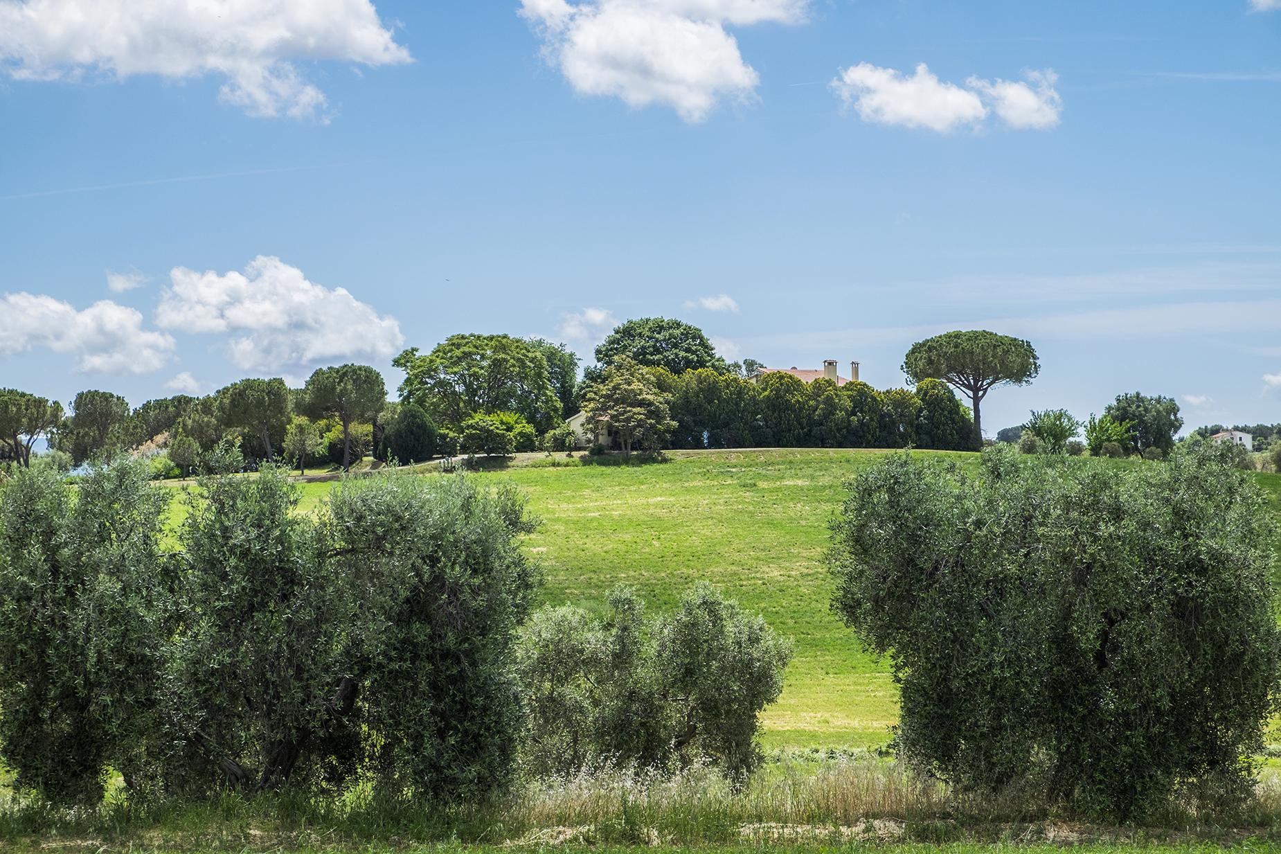 Rustico in Vendita a Magliano In Toscana: 5 locali, 320 mq - Foto 20