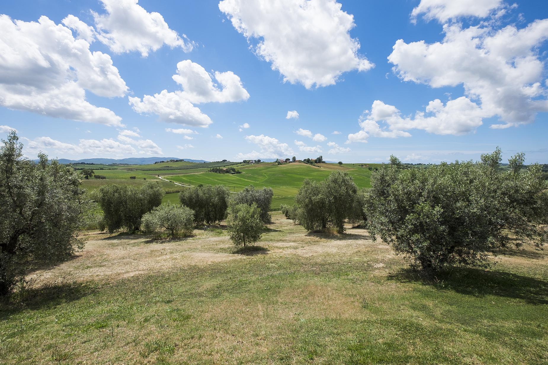 Rustico in Vendita a Magliano In Toscana: 5 locali, 320 mq - Foto 16