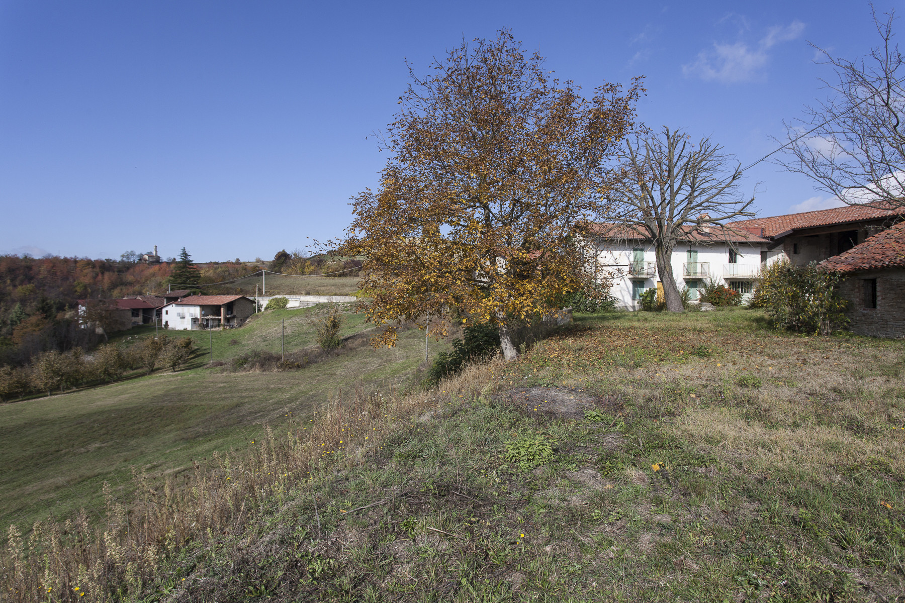 Villa in Vendita a Clavesana: 5 locali, 1130 mq - Foto 11