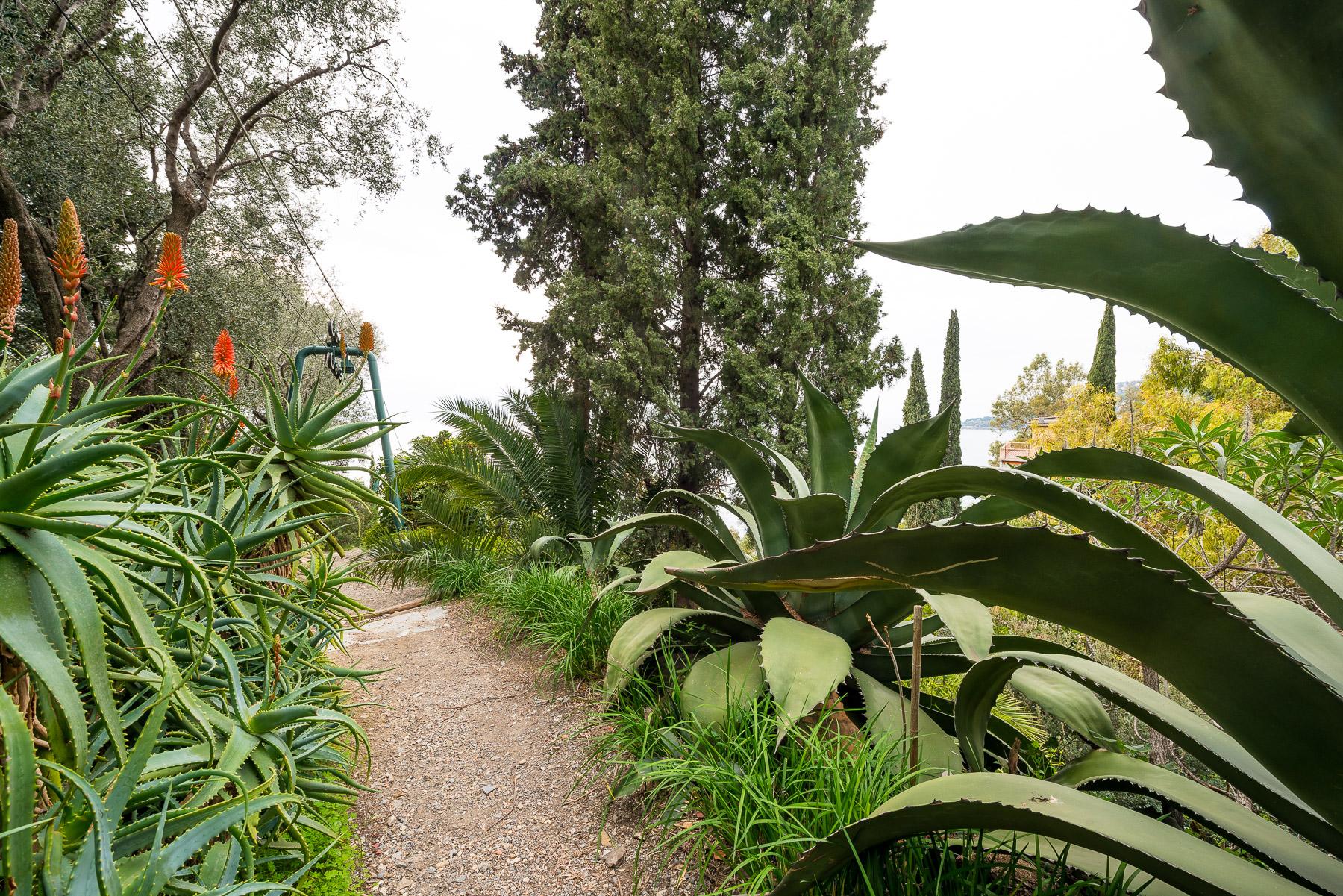 Appartamento in Vendita a Ventimiglia: 5 locali, 250 mq - Foto 21