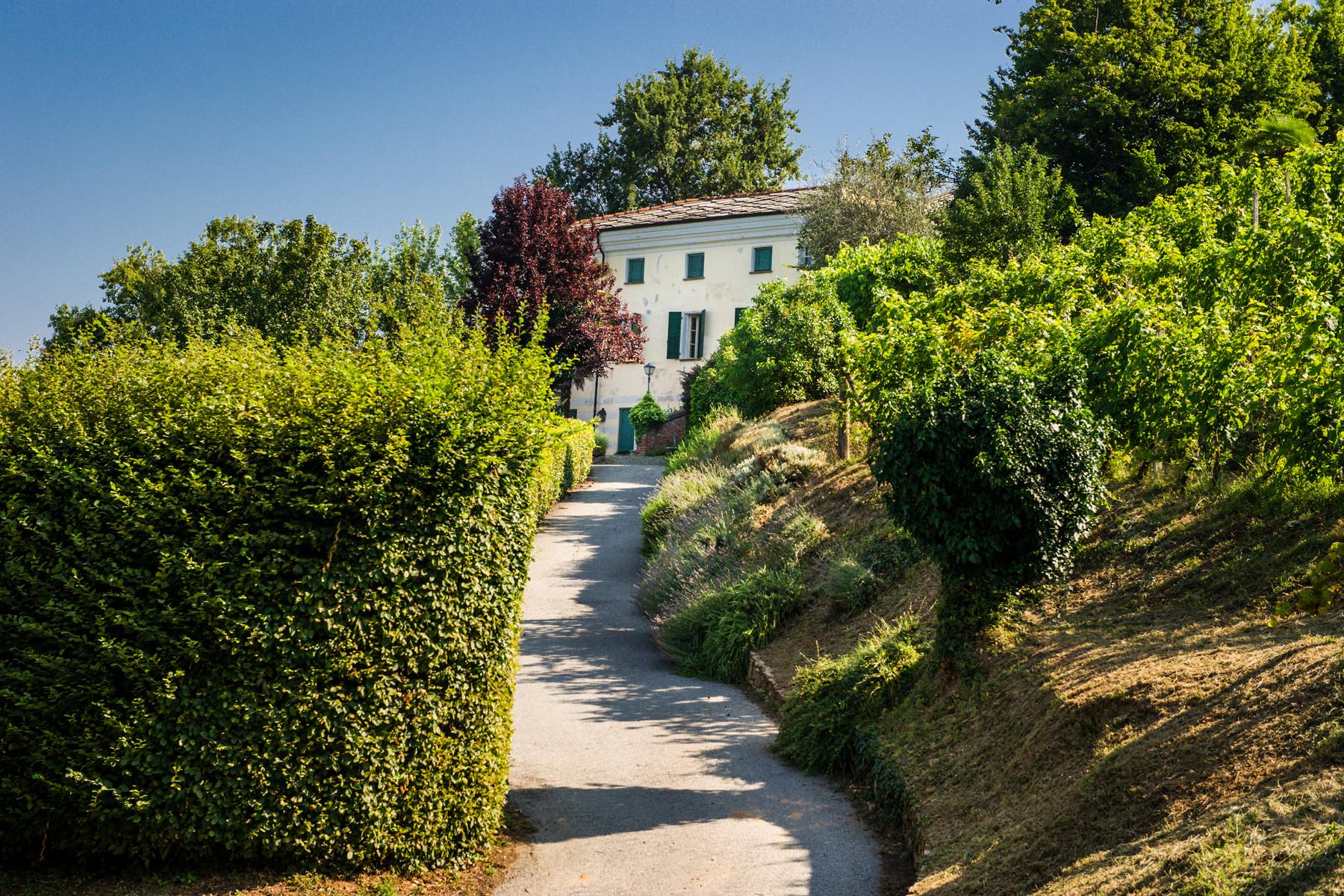 Villa in Vendita a Saluzzo: 5 locali, 900 mq - Foto 3