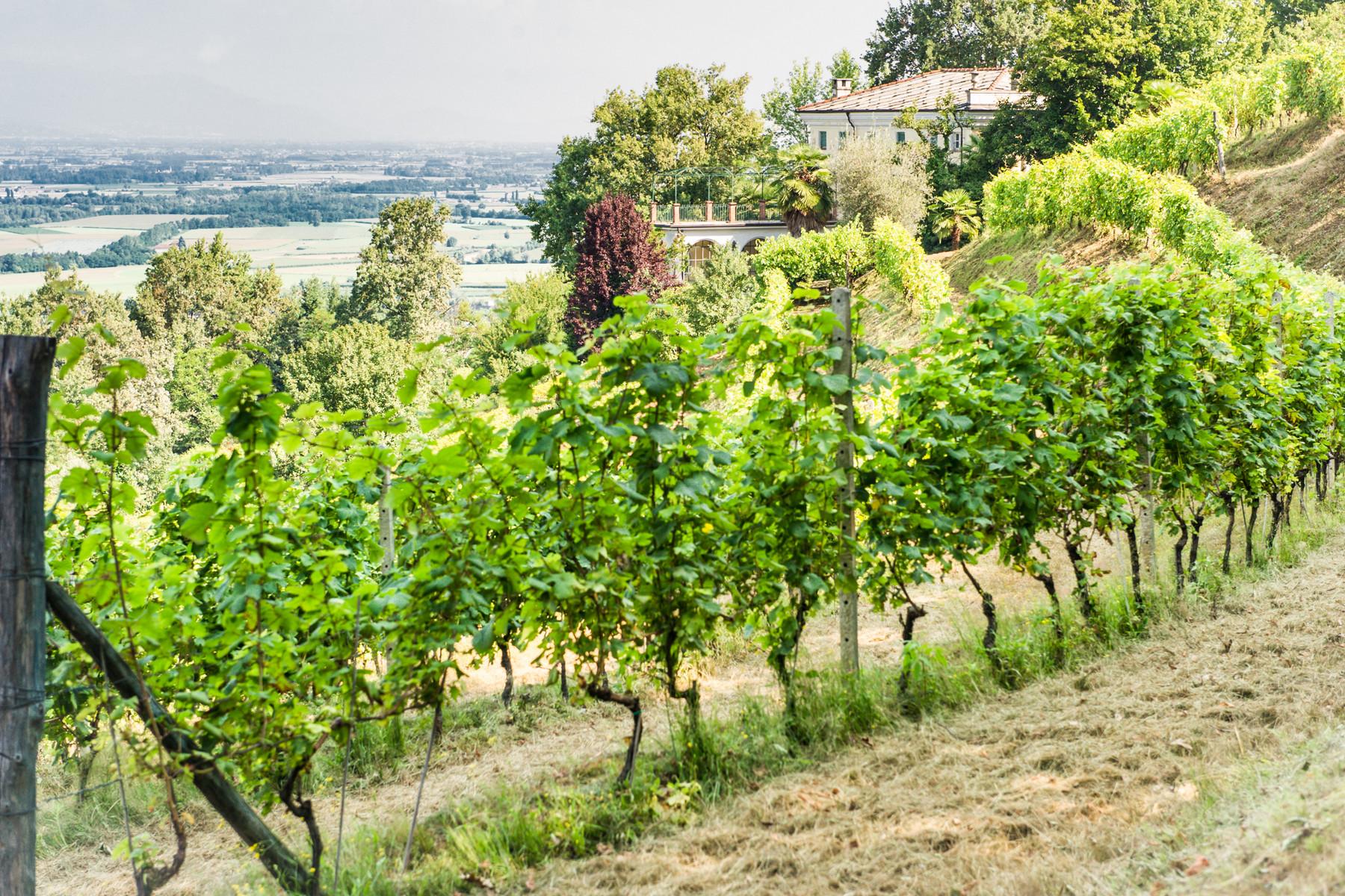 Villa in Vendita a Saluzzo: 5 locali, 900 mq - Foto 4