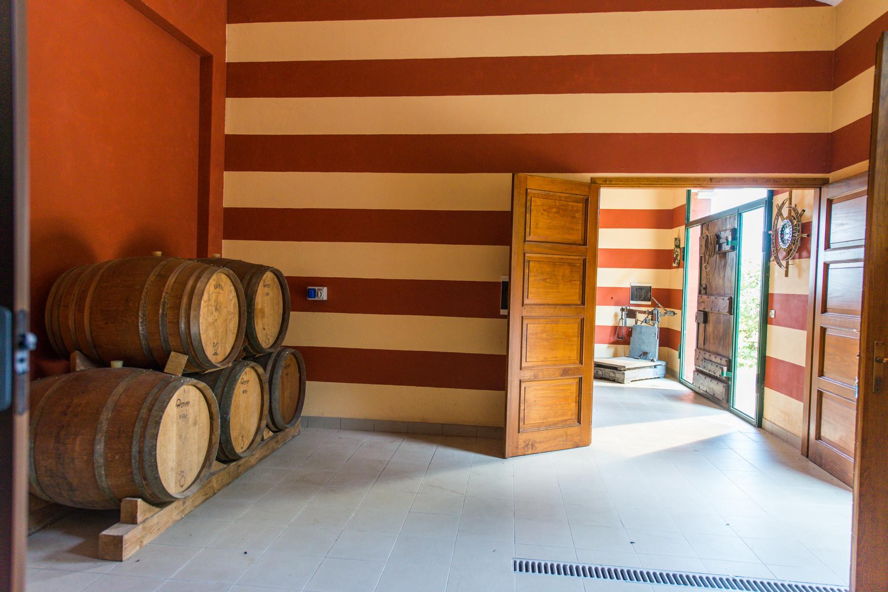 Villa in Vendita a Saluzzo: 5 locali, 900 mq - Foto 16