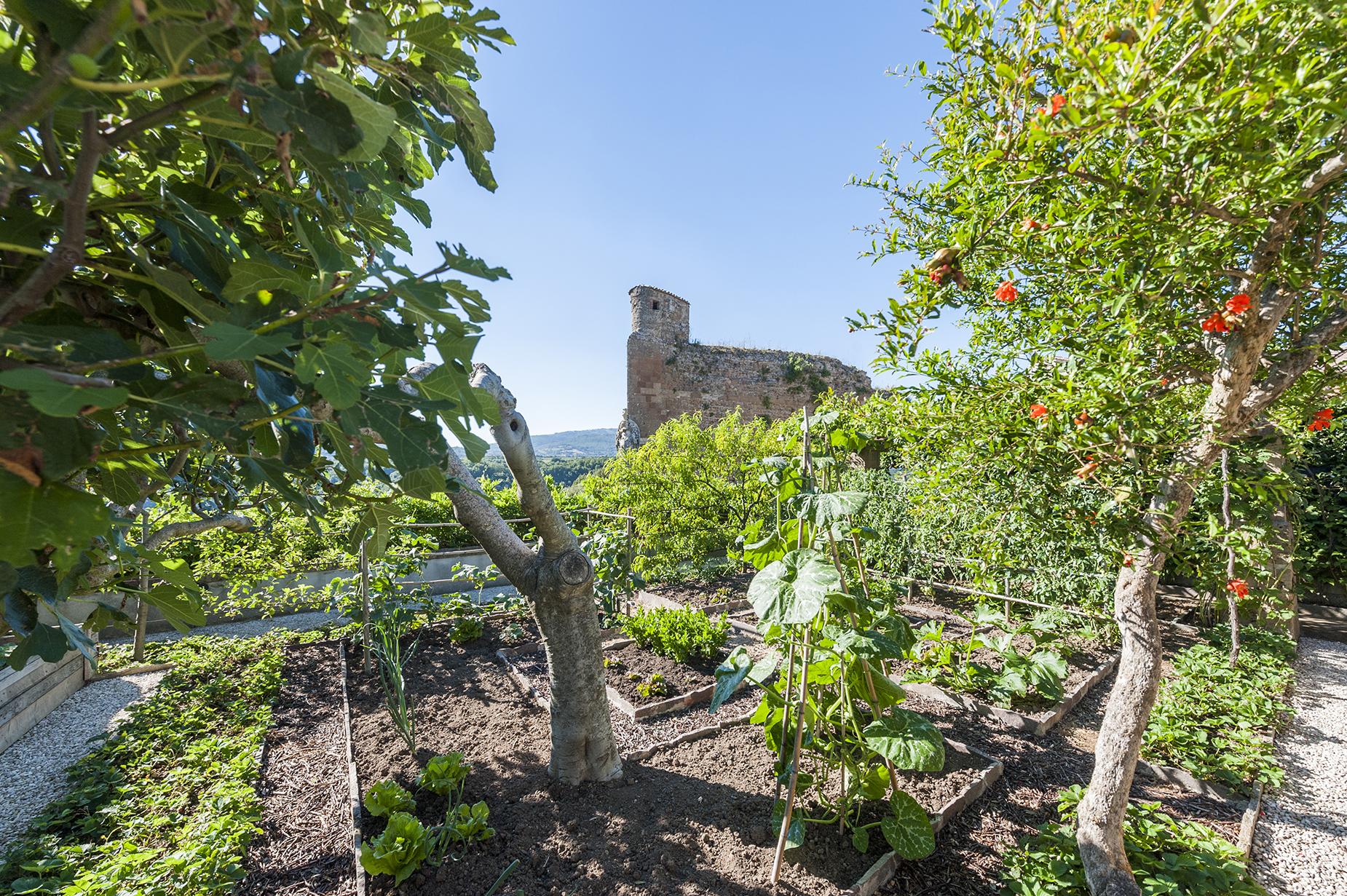 Casa indipendente in Vendita a Sorano: 5 locali, 230 mq - Foto 15
