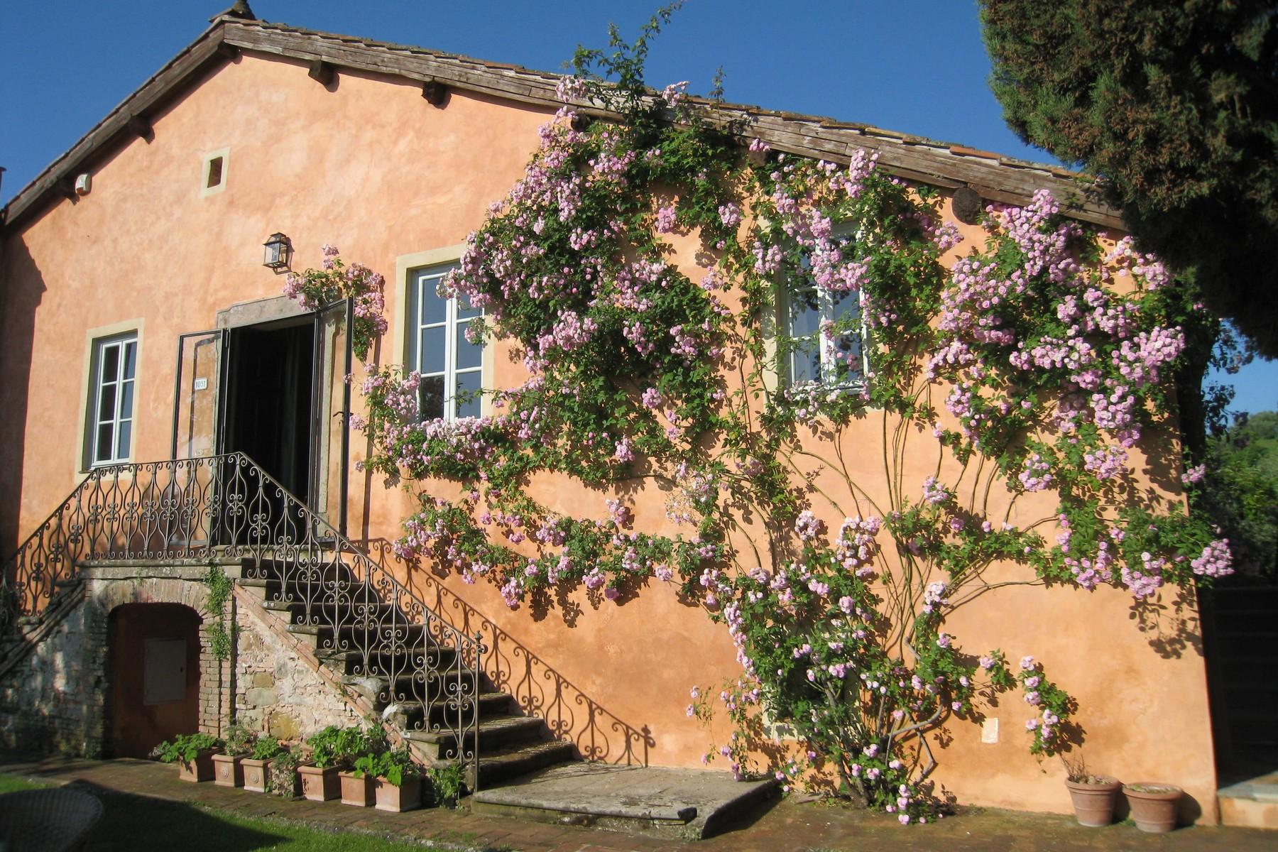 Rustico in Vendita a Lucca: 5 locali, 540 mq - Foto 2