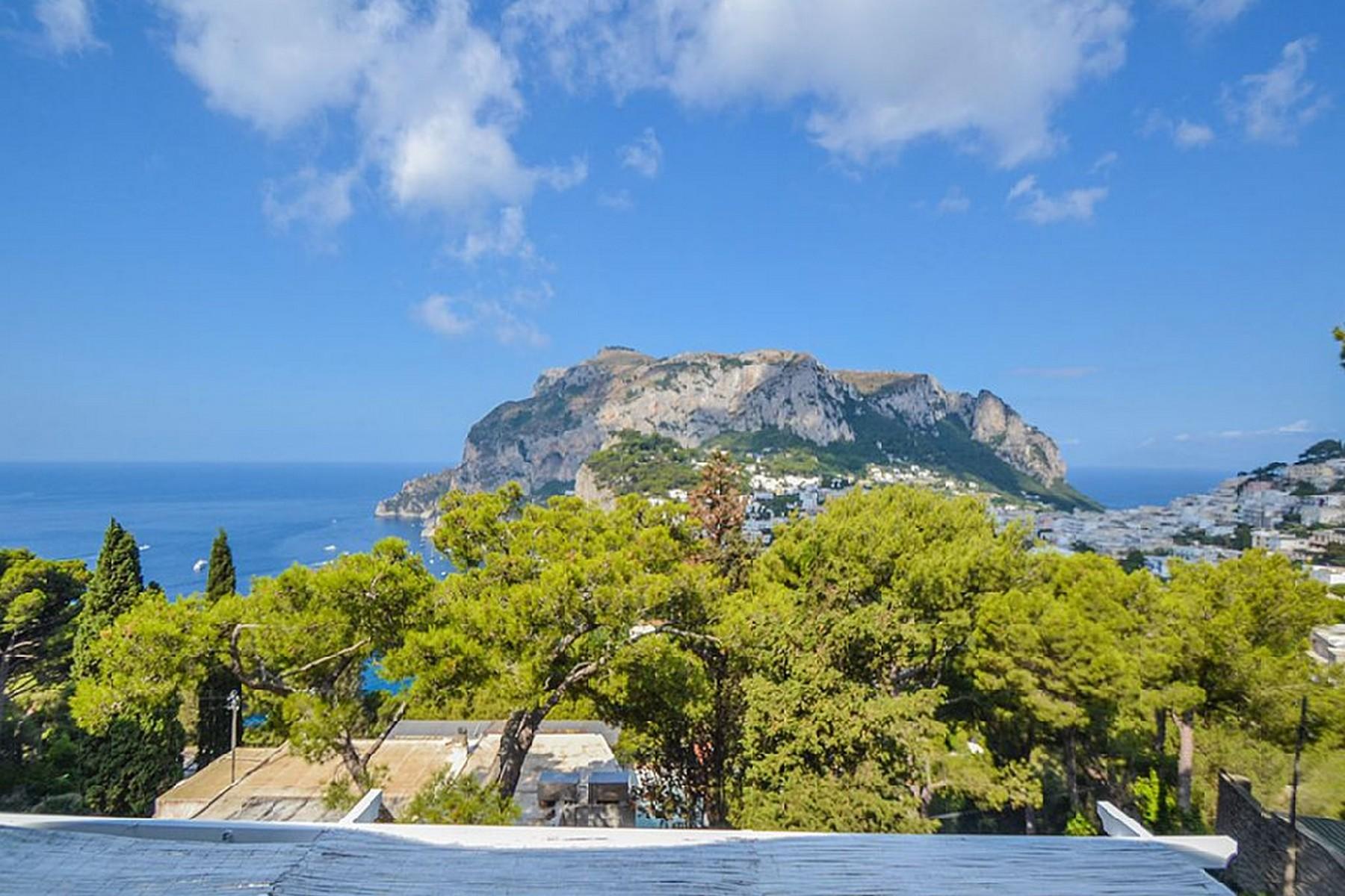 Villa in Vendita a Capri: 5 locali, 400 mq - Foto 4