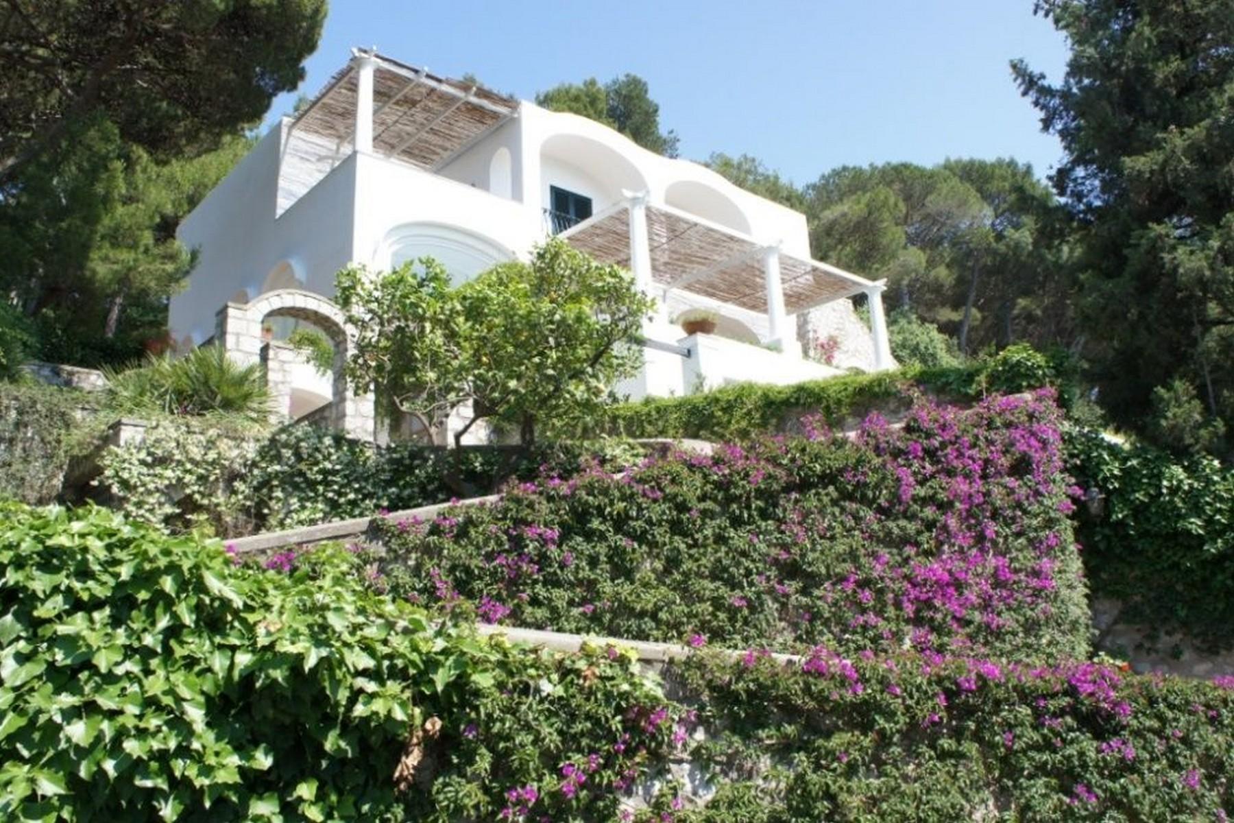 Villa in Vendita a Capri: 5 locali, 400 mq - Foto 10