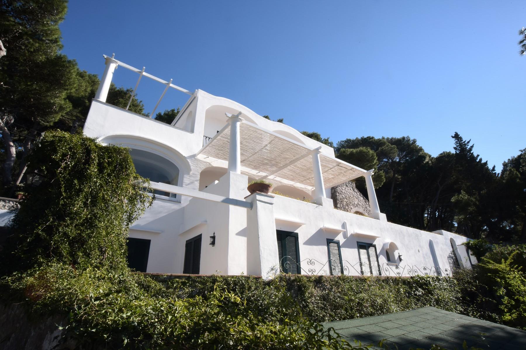 Villa in Vendita a Capri: 5 locali, 400 mq - Foto 3