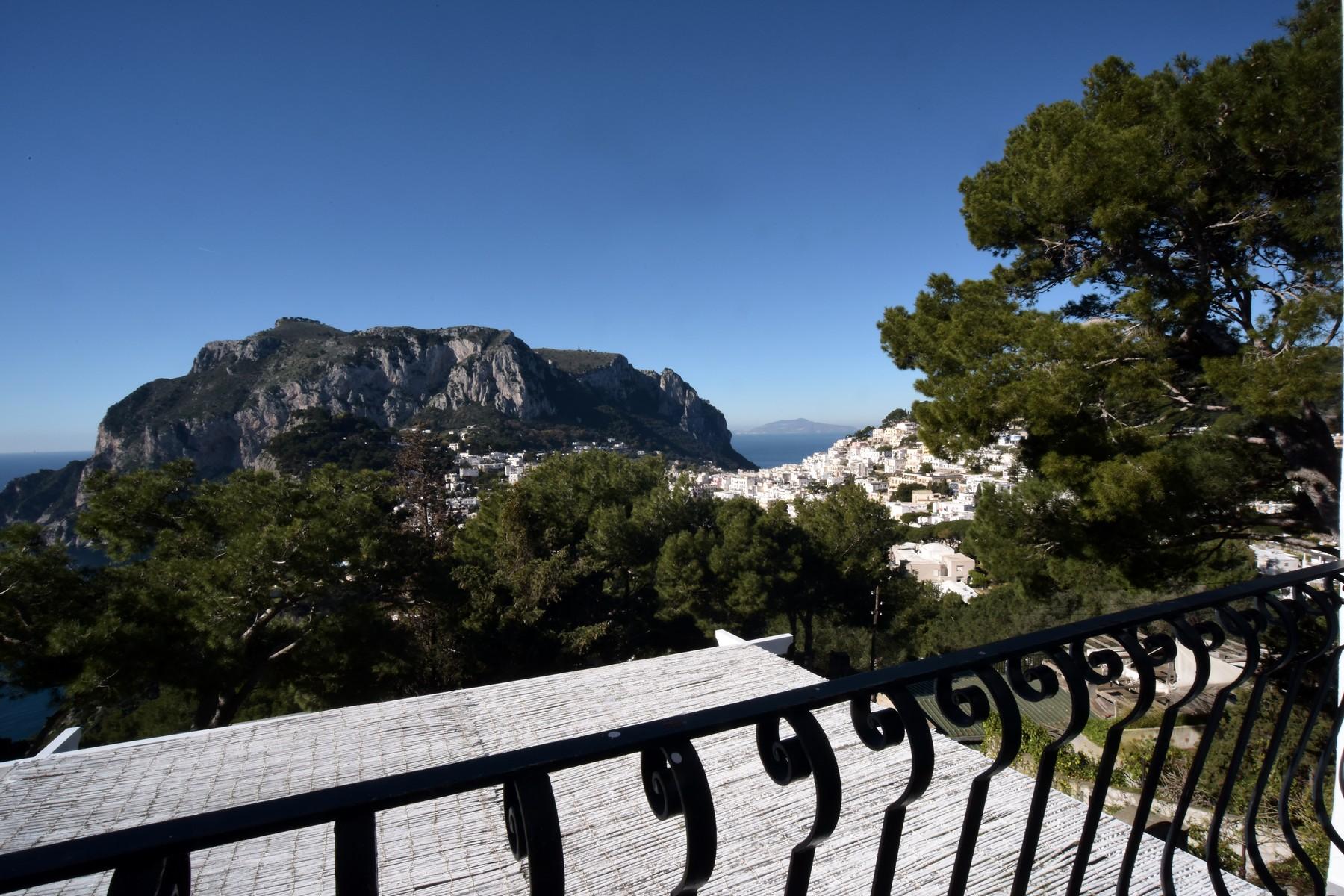 Villa in Vendita a Capri: 5 locali, 400 mq - Foto 2