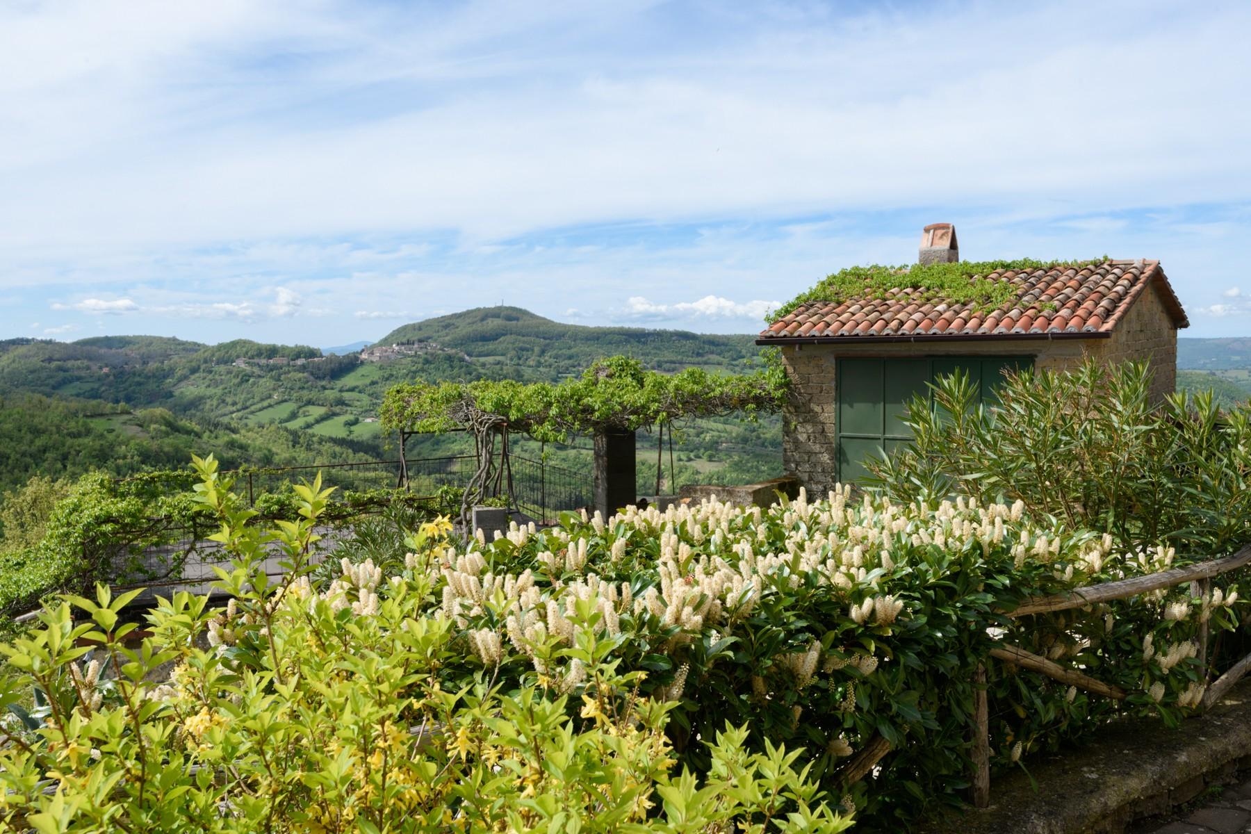 Casa indipendente in Vendita a Semproniano: 4 locali, 220 mq - Foto 3
