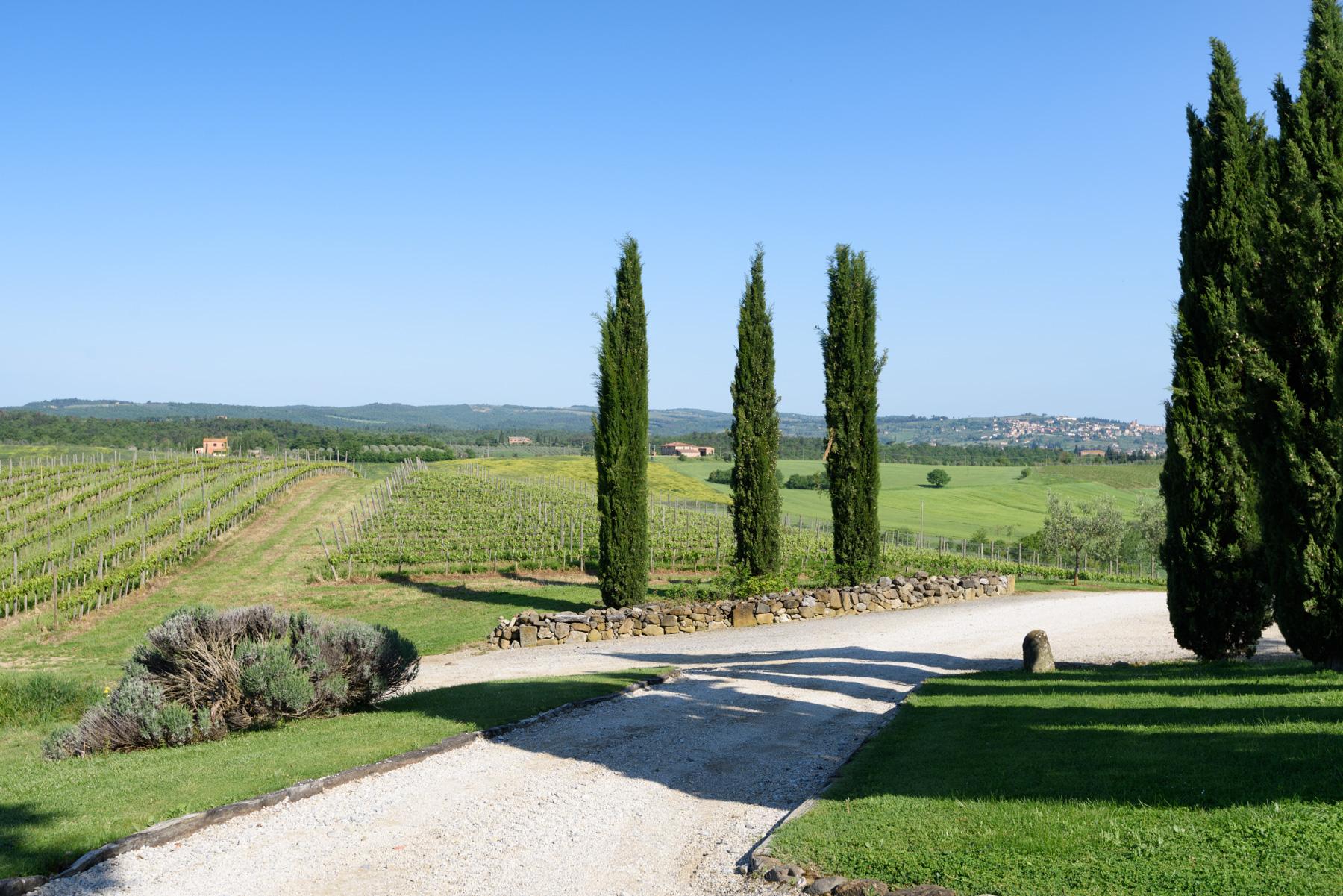 Villa in Vendita a Siena: 5 locali, 1300 mq - Foto 23
