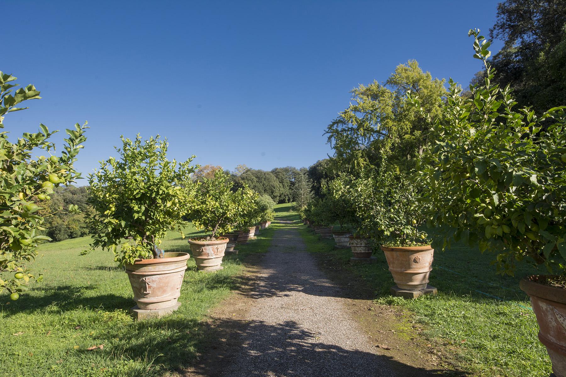 Villa in Vendita a Lucca: 5 locali, 2451 mq - Foto 17