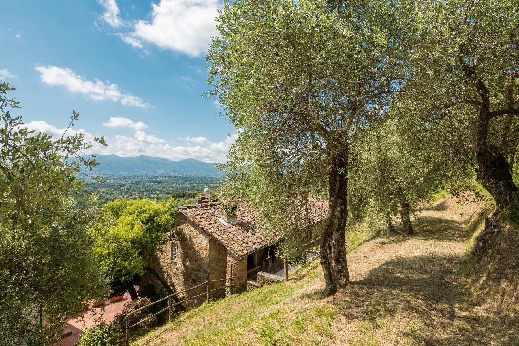 Villa in Vendita a Lucca: 5 locali, 550 mq - Foto 19