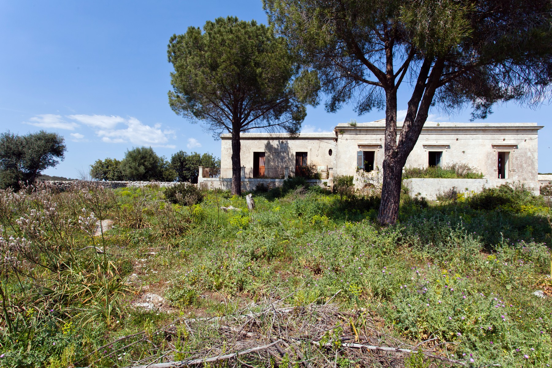 Casa indipendente in Vendita a Noto: 5 locali, 1000 mq - Foto 3