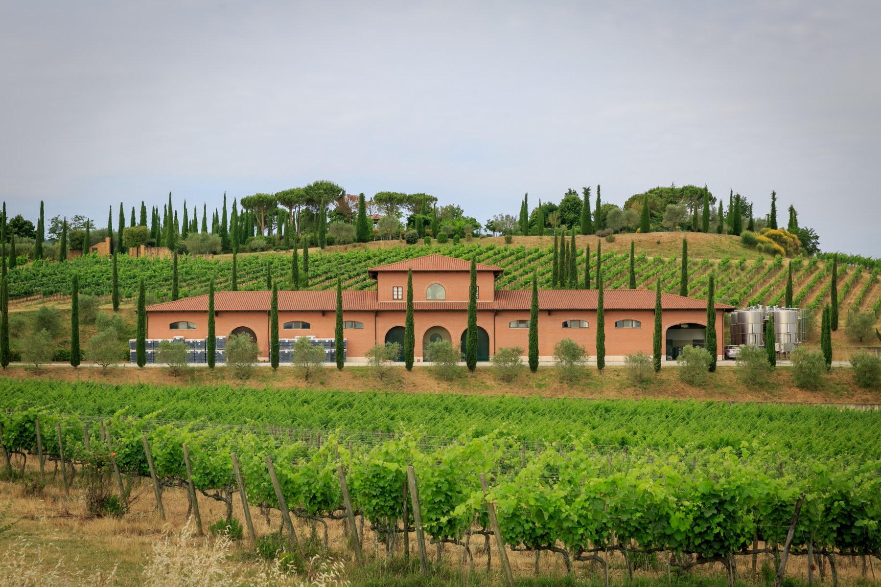Villa in Vendita a Montepulciano: 5 locali, 2830 mq