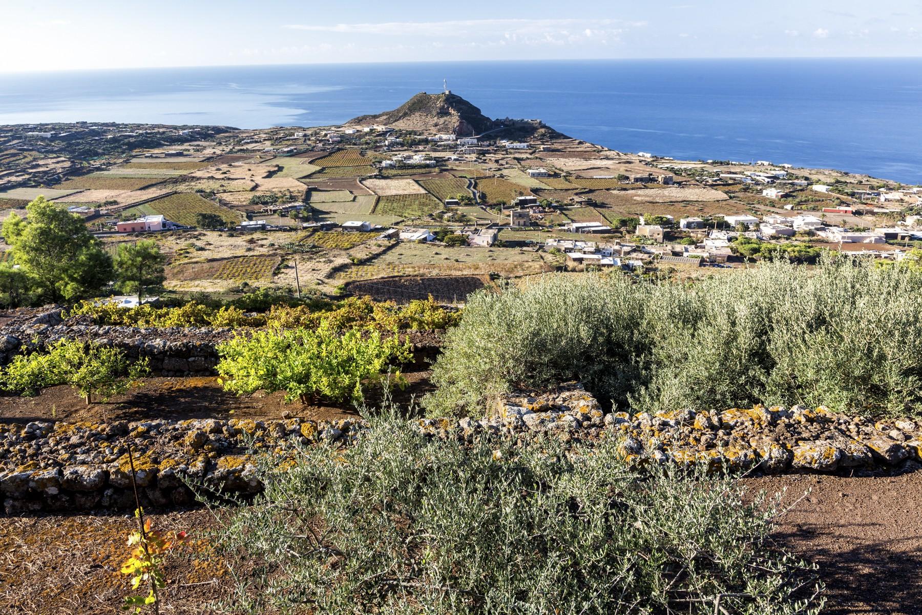 Villa in Vendita a Pantelleria: 5 locali, 530 mq - Foto 20