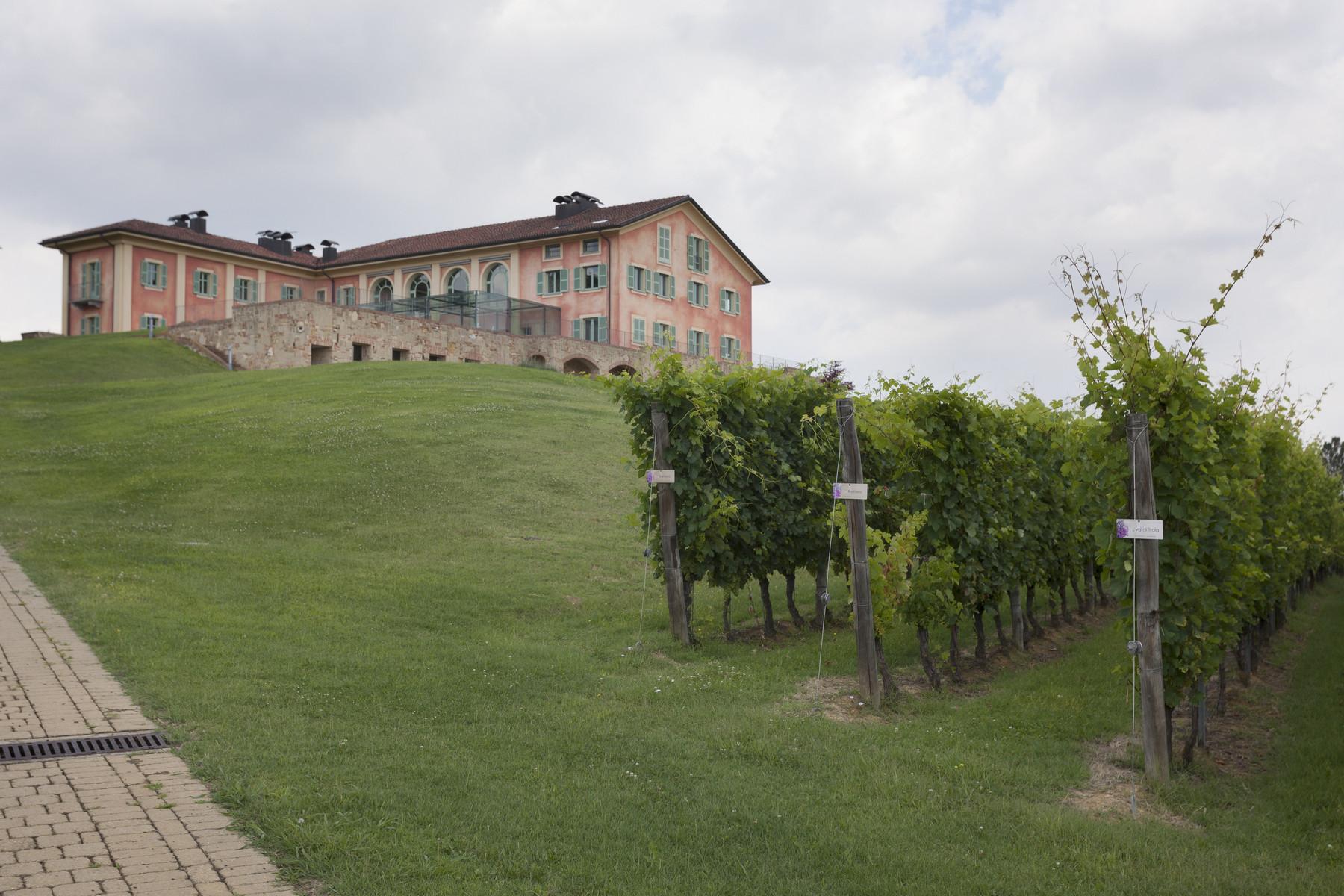 Villa in Vendita a Fubine: 5 locali, 2600 mq - Foto 6