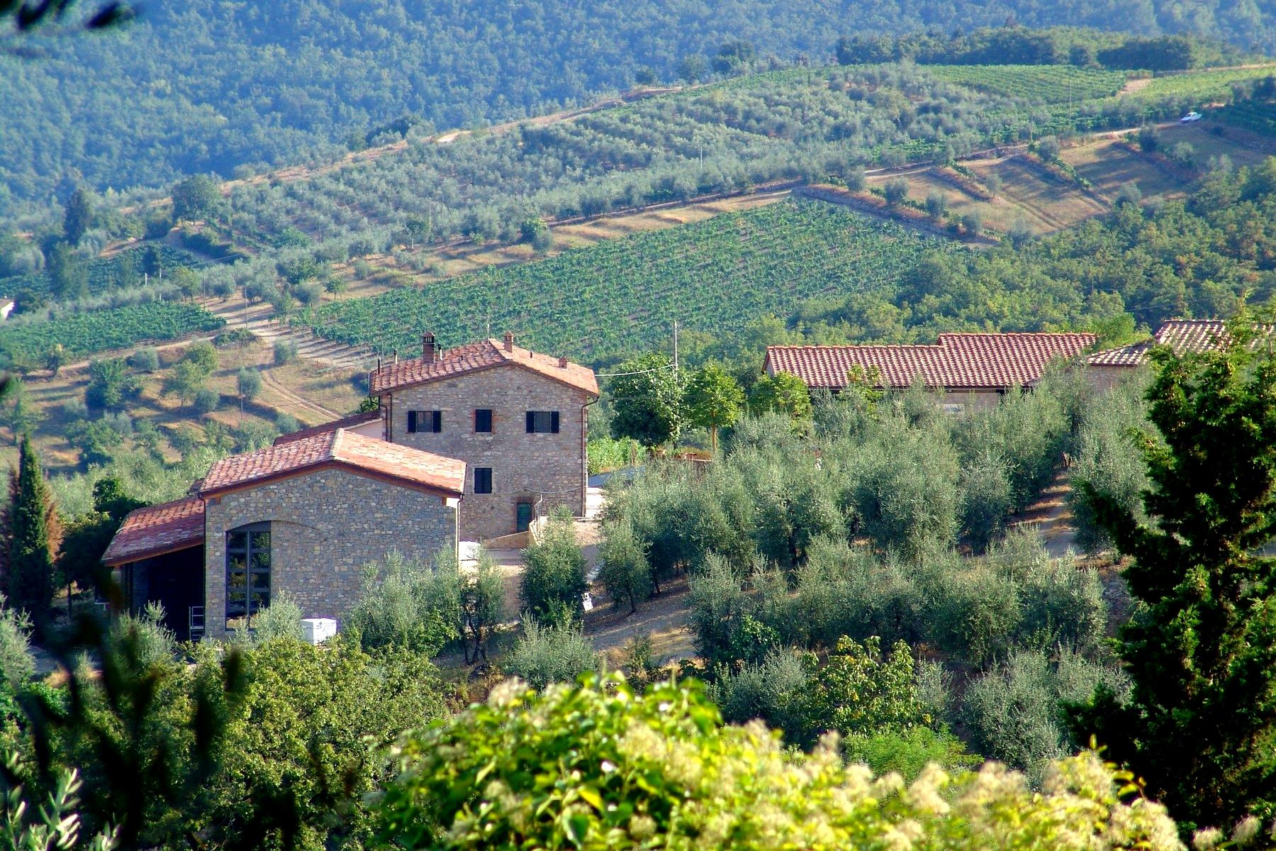 Rustico in Vendita a Gaiole In Chianti: 5 locali, 1380 mq