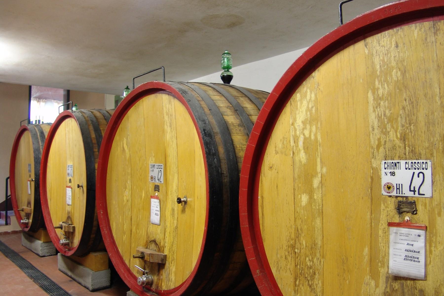 Rustico in Vendita a Gaiole In Chianti: 5 locali, 1380 mq - Foto 14