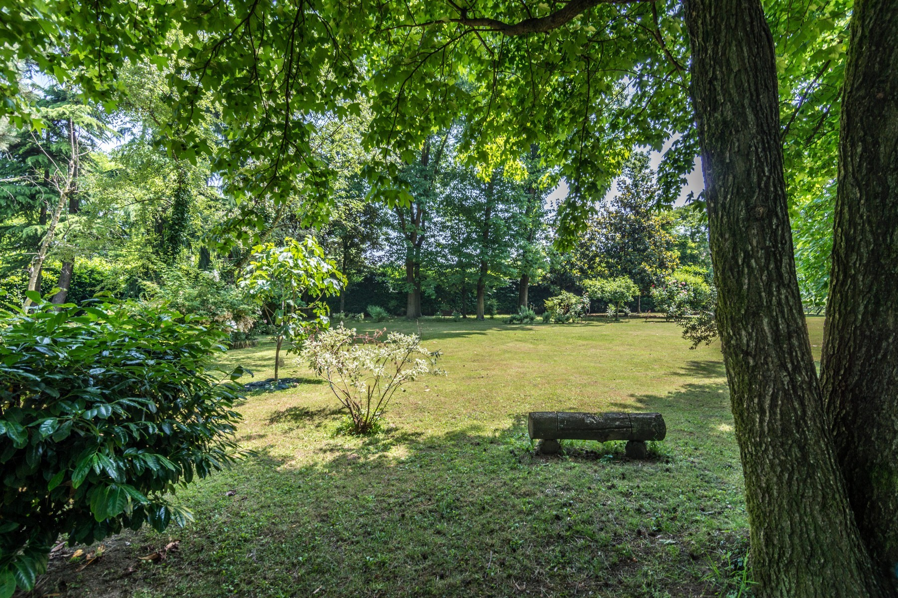 Villa in Vendita a Milano: 5 locali, 390 mq - Foto 4