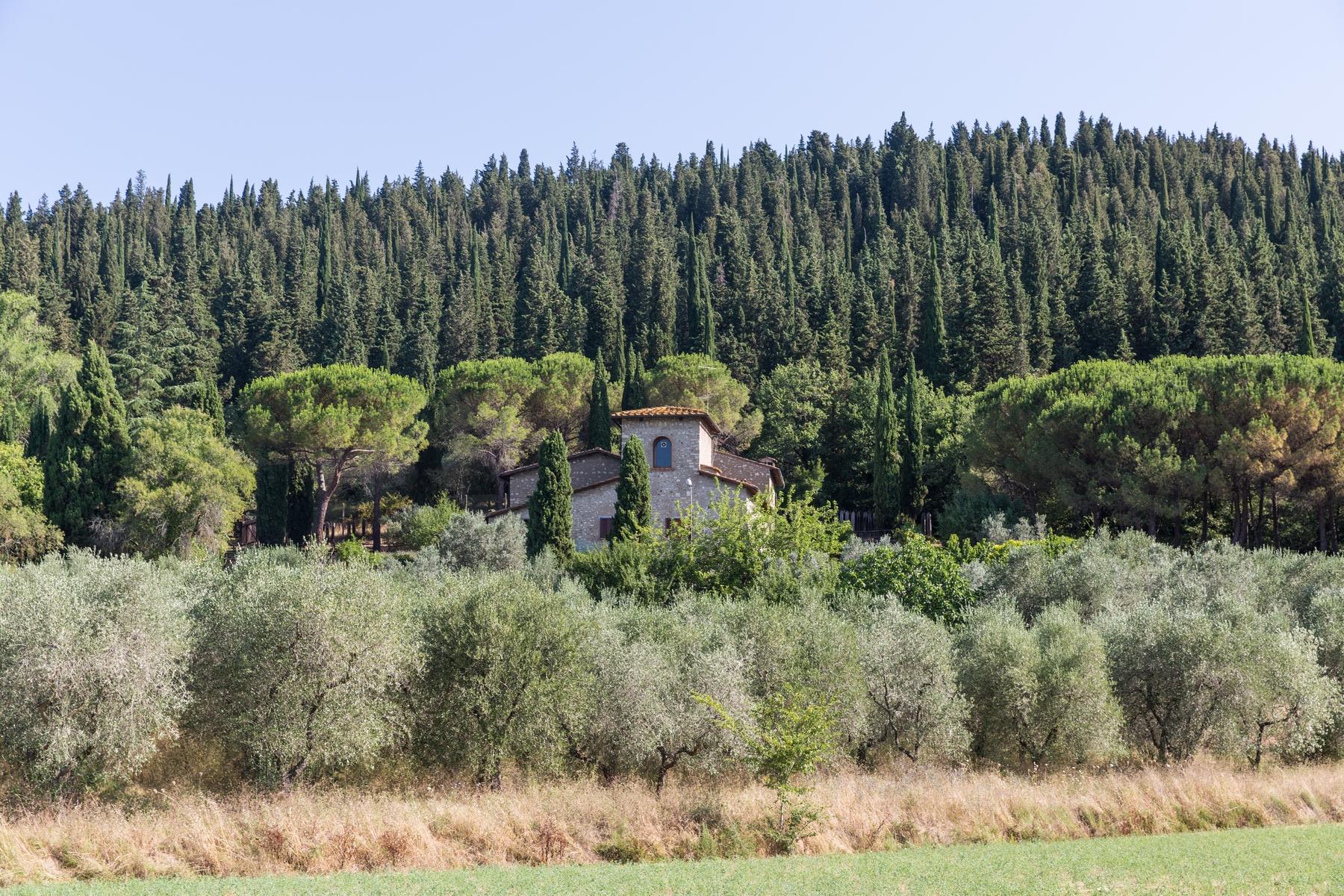 Rustico in Vendita a Calenzano: 5 locali, 800 mq - Foto 10