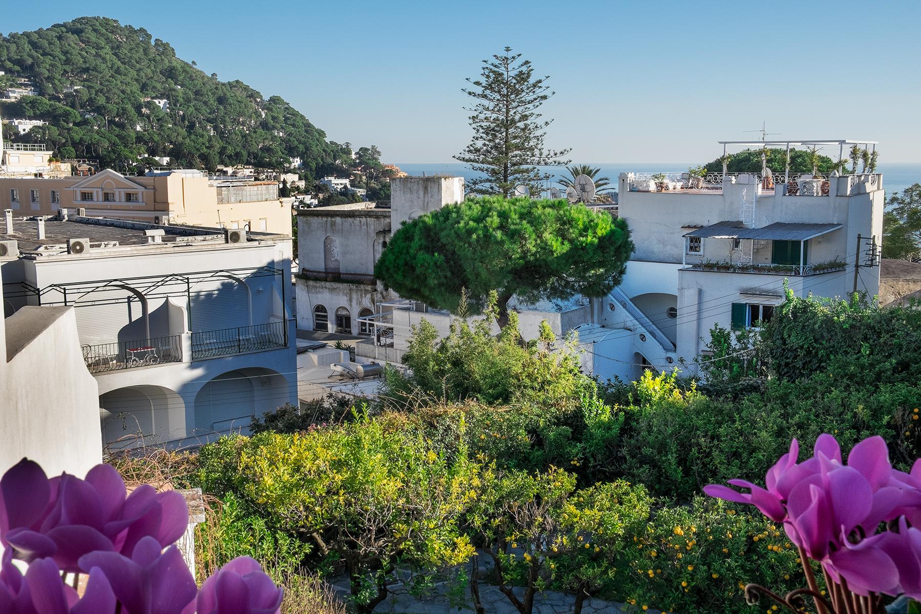 Casa indipendente in Vendita a Capri: 5 locali, 400 mq - Foto 21