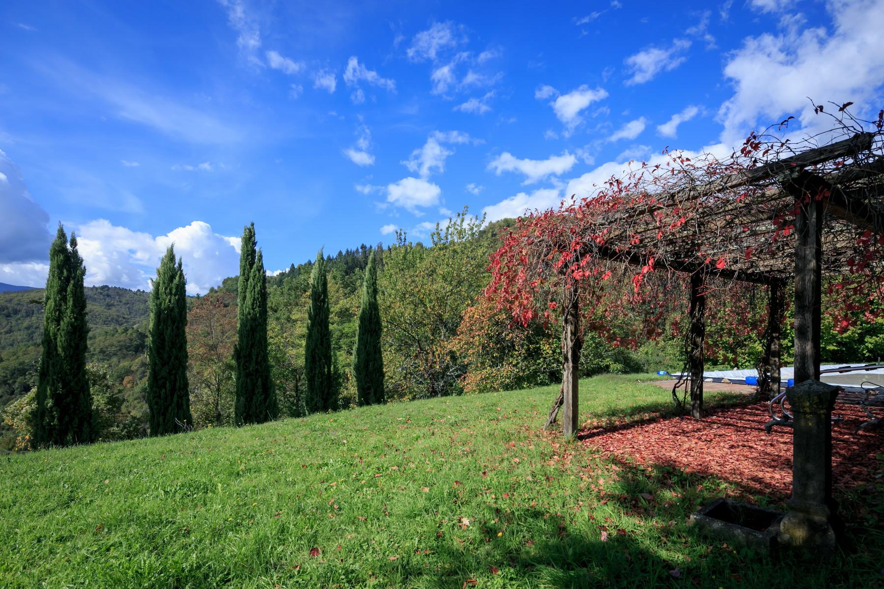 Villa in Vendita a Fosciandora: 5 locali, 500 mq - Foto 7