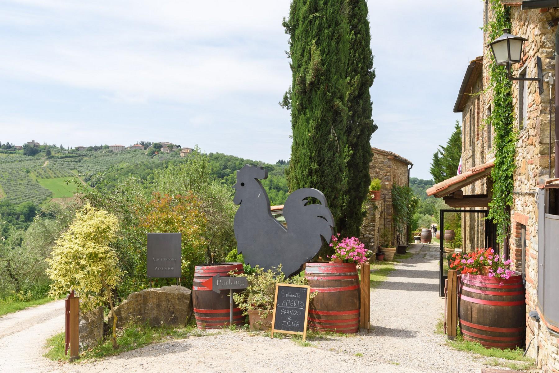 Rustico in Vendita a Gaiole In Chianti: 5 locali, 2170 mq - Foto 3