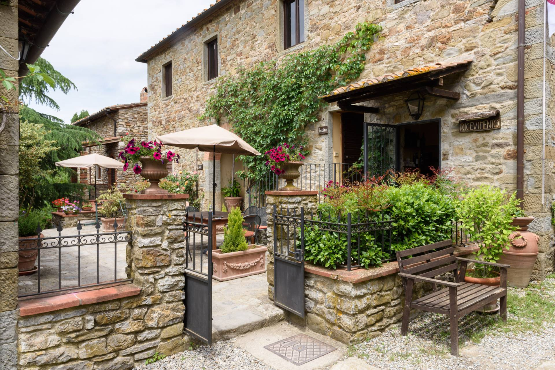 Rustico in Vendita a Gaiole In Chianti: 5 locali, 2170 mq - Foto 4
