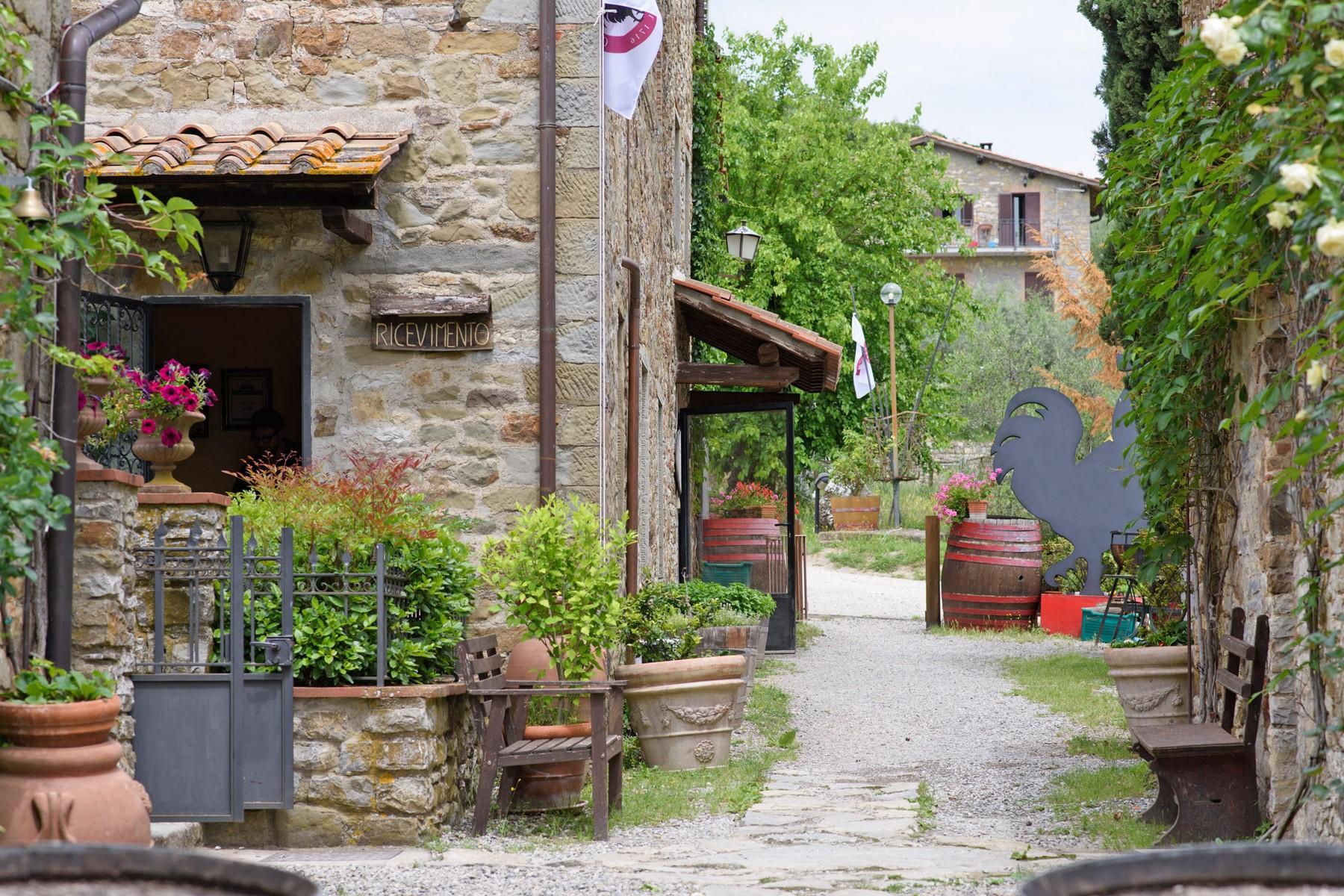Rustico in Vendita a Gaiole In Chianti: 5 locali, 2170 mq - Foto 7