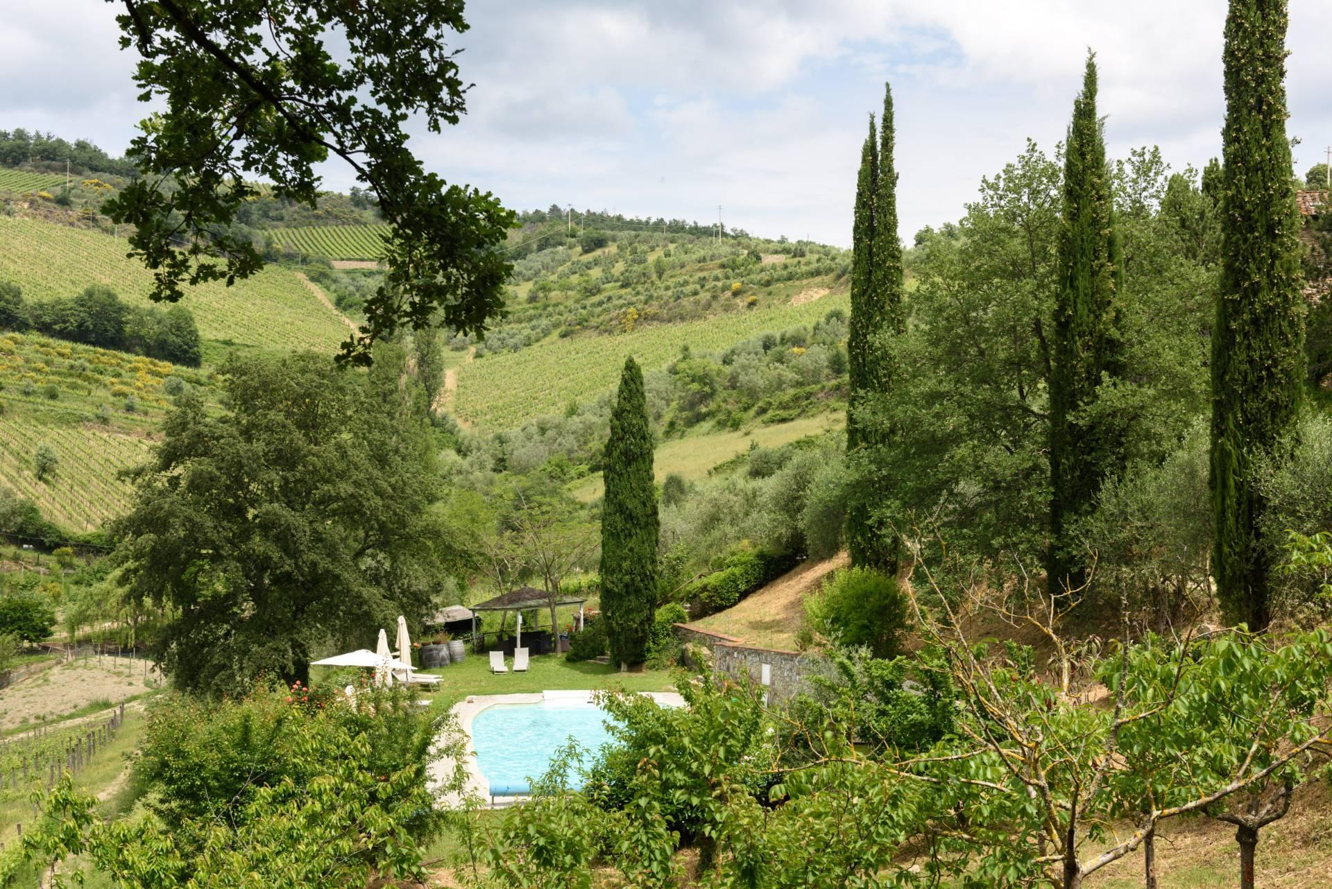 Rustico in Vendita a Gaiole In Chianti: 5 locali, 2170 mq - Foto 13