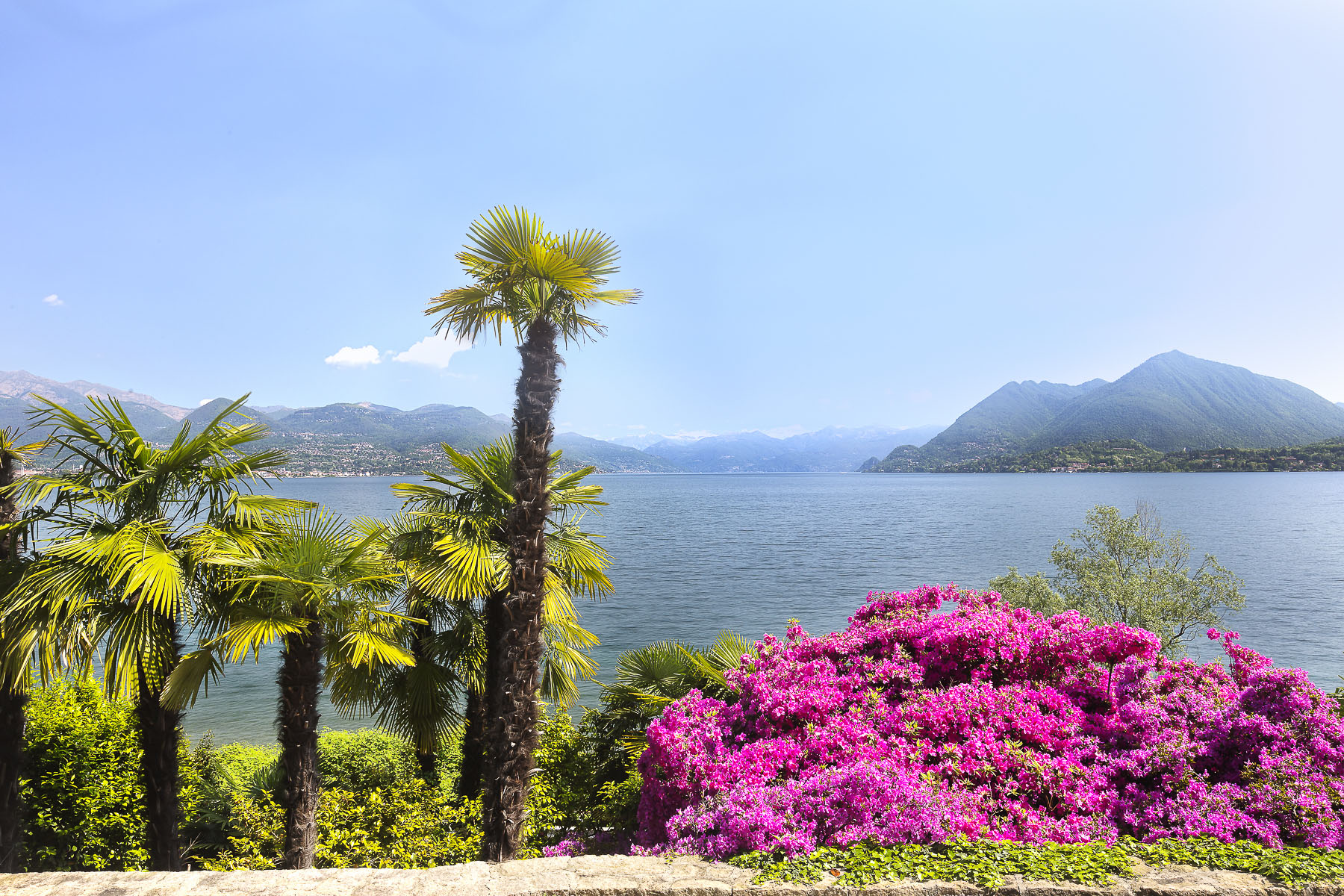 Villa in Vendita a Stresa: 5 locali, 1440 mq - Foto 4