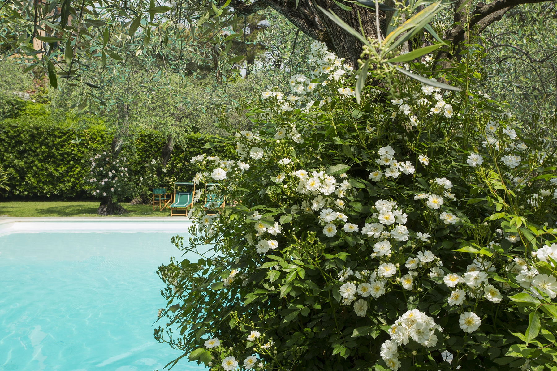 Villa in Vendita a Santa Margherita Ligure: 5 locali, 580 mq - Foto 28