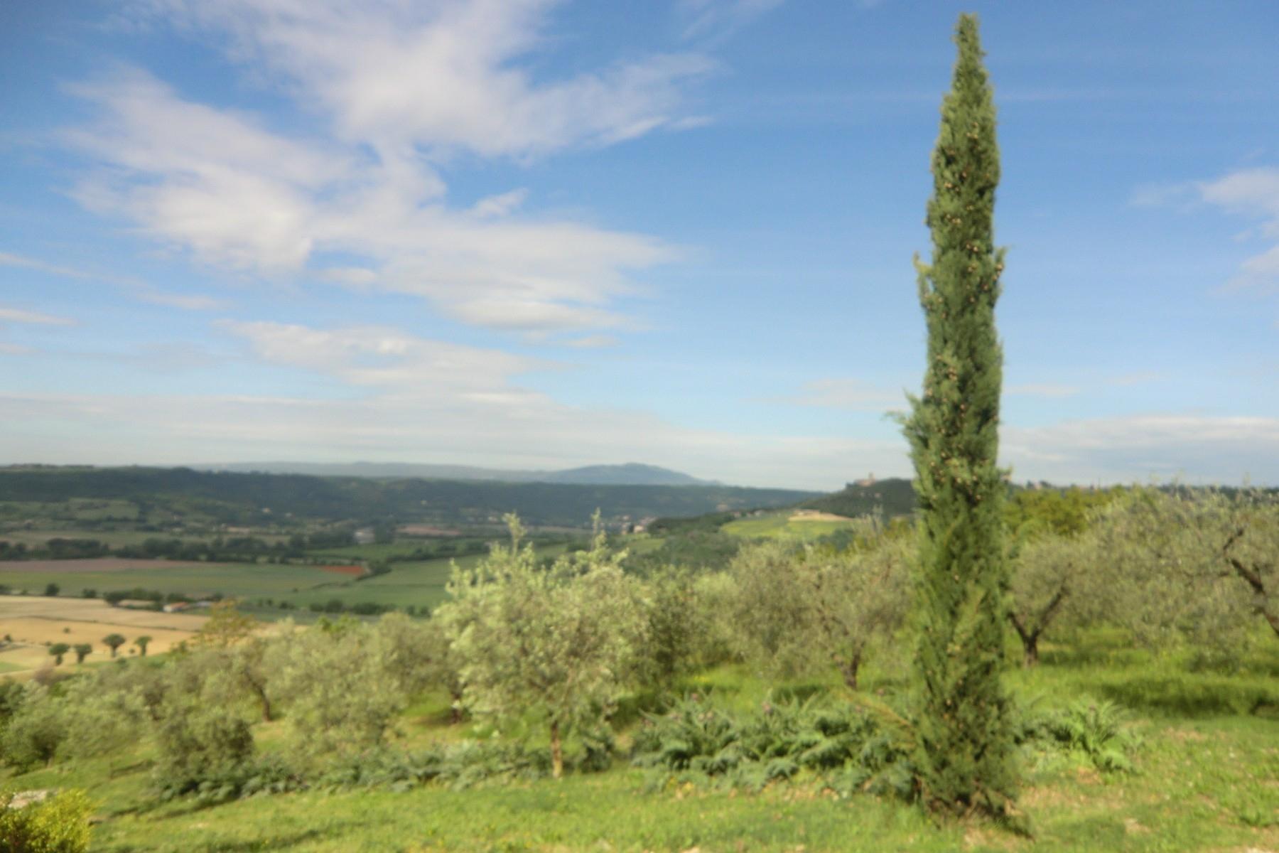 Villa in Vendita a Otricoli: 5 locali, 770 mq - Foto 23