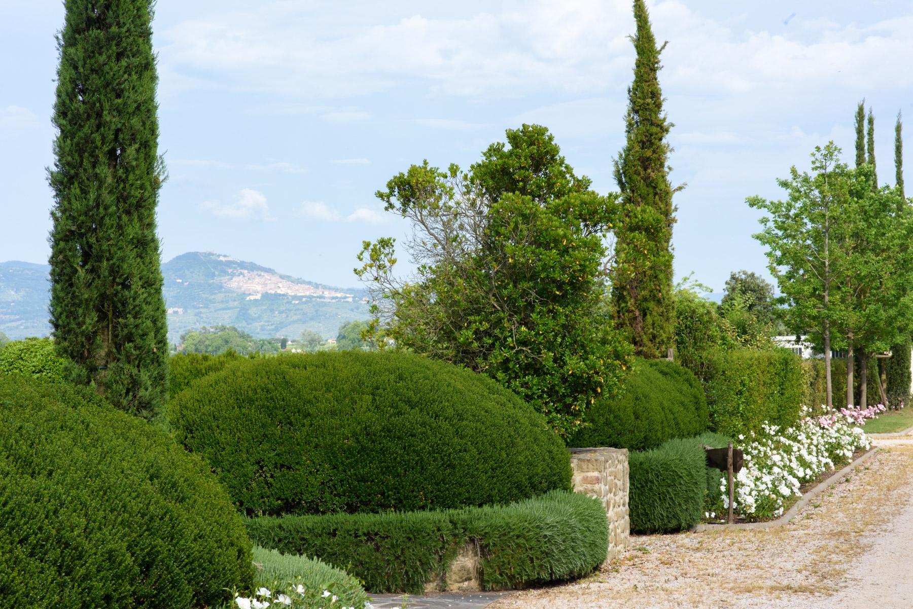 Villa in Vendita a Cortona: 5 locali, 246 mq - Foto 20