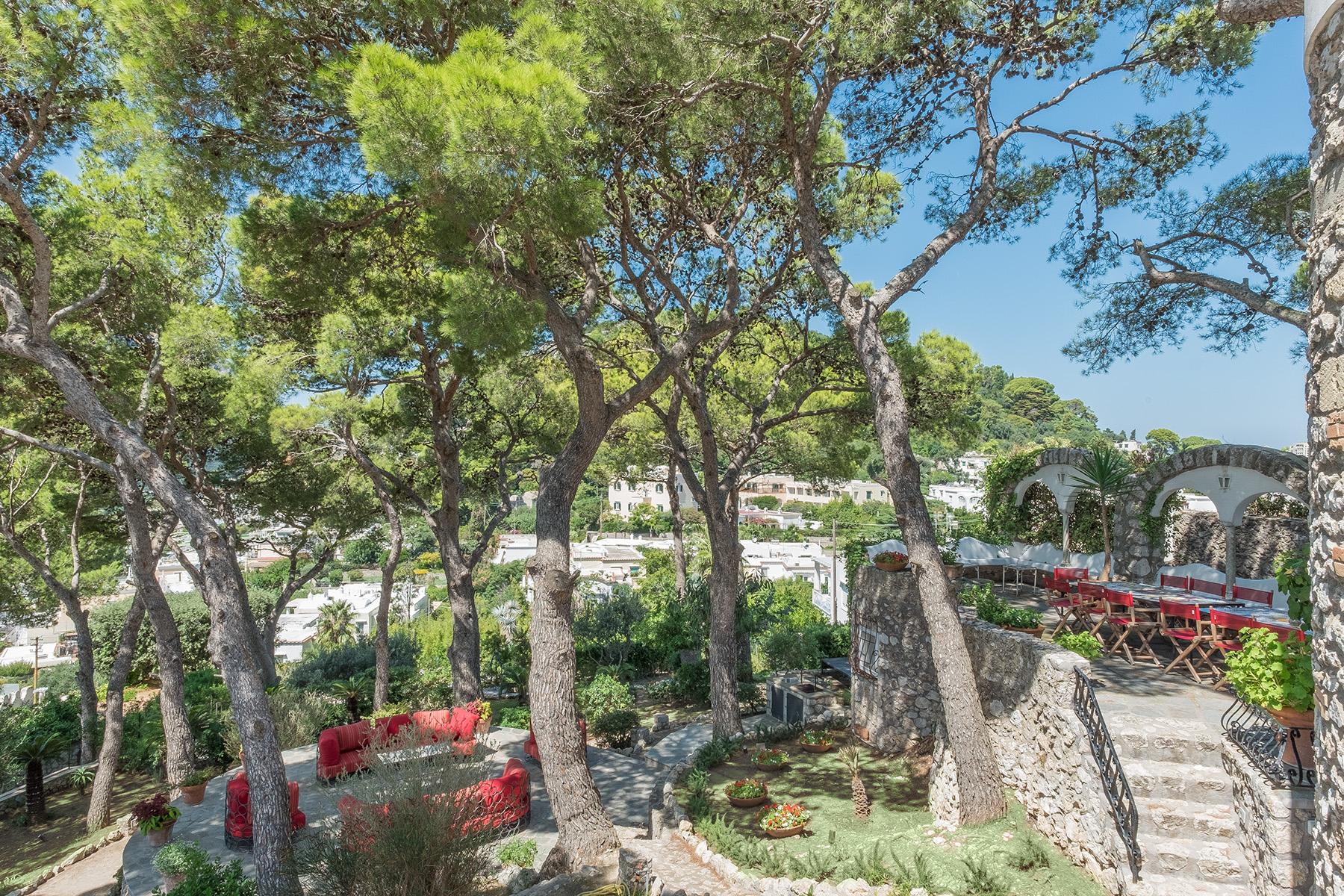 Villa in Vendita a Capri: 5 locali, 450 mq - Foto 2