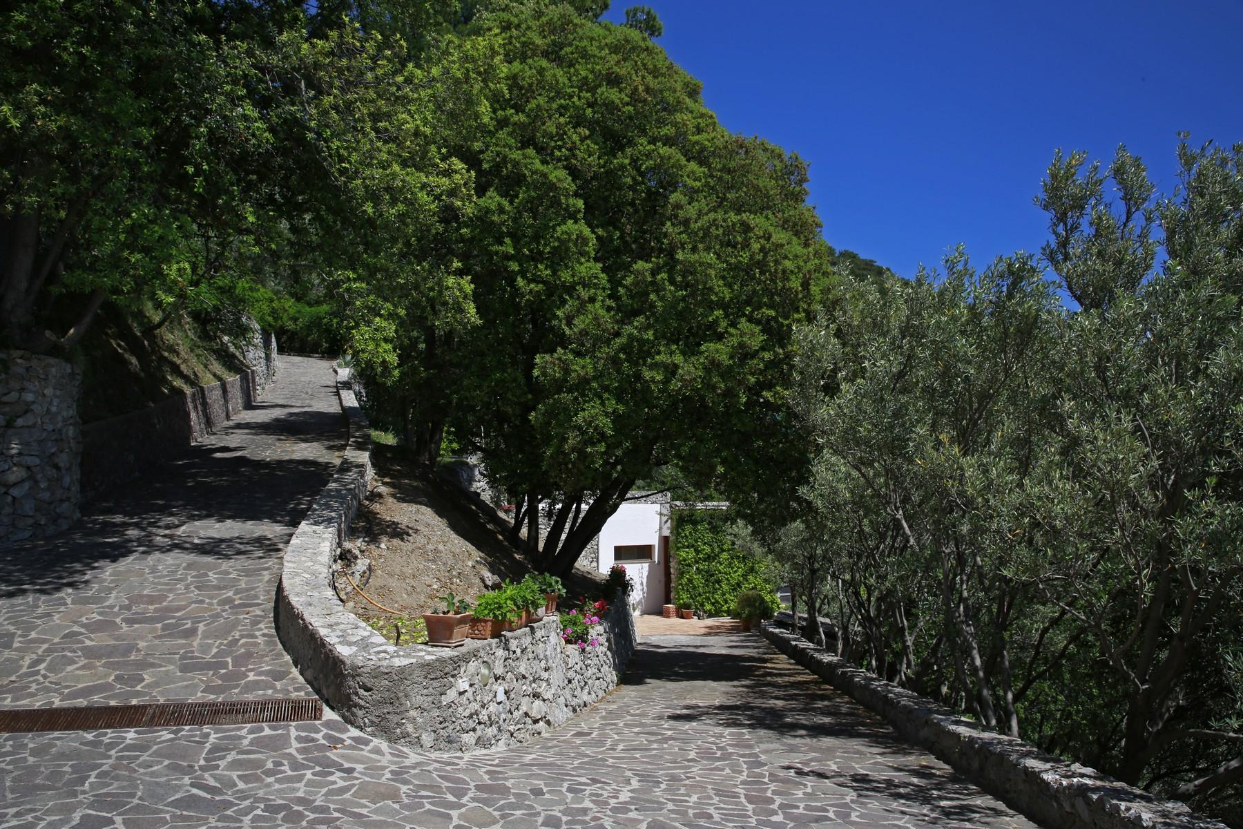 Villa in Vendita a Maiori: 5 locali, 202 mq - Foto 8