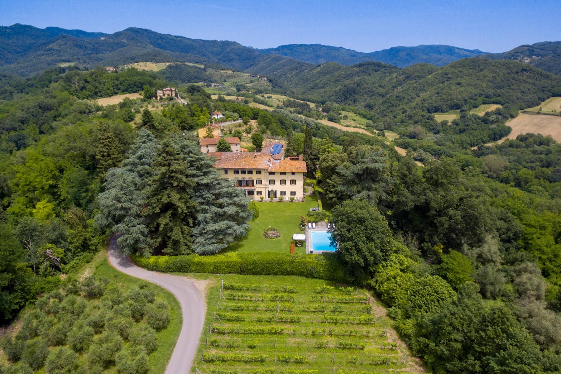 Villa in Vendita a Vicchio: 5 locali, 3000 mq - Foto 5