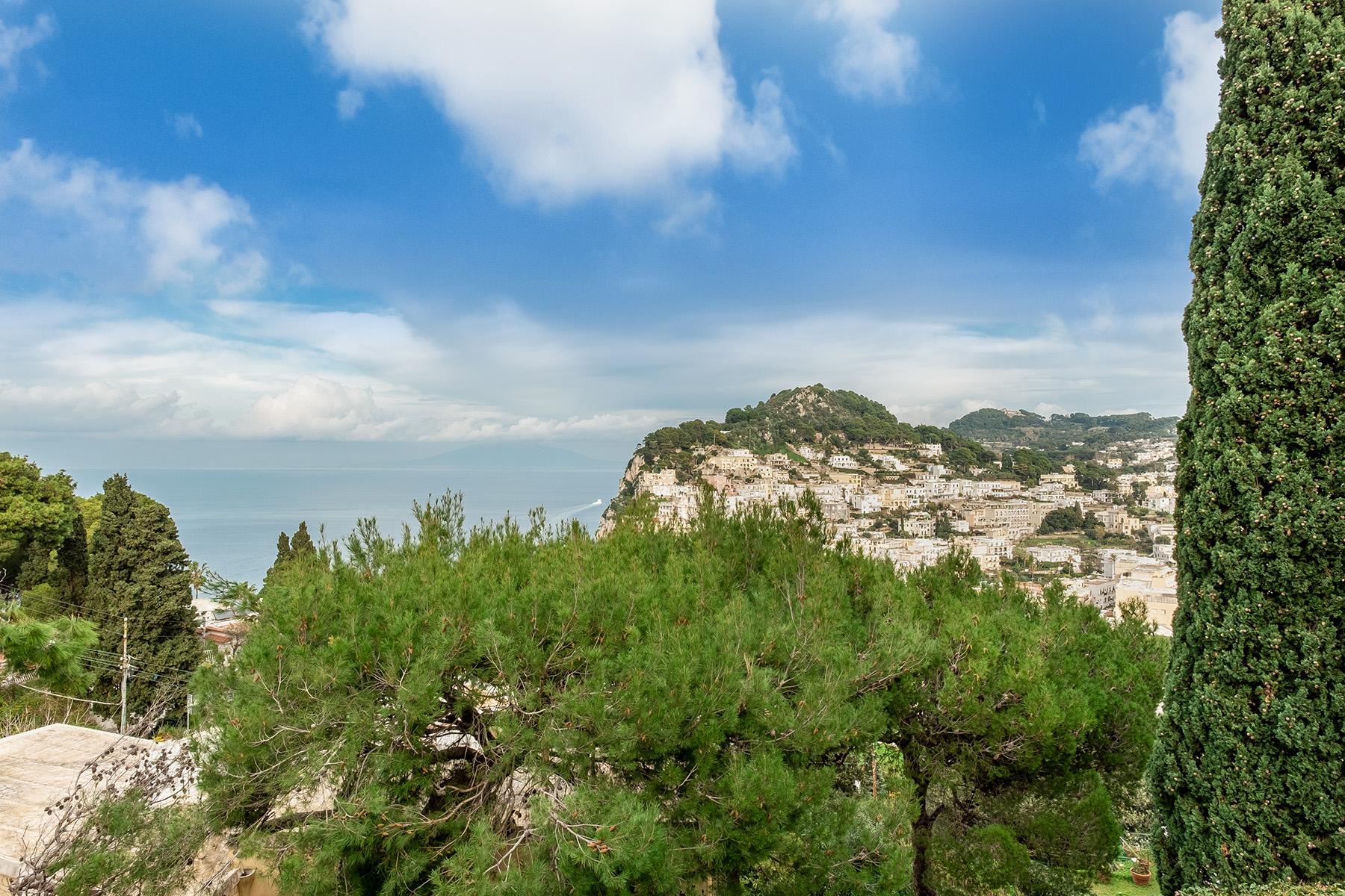 Villa in Vendita a Capri: 5 locali, 500 mq - Foto 29