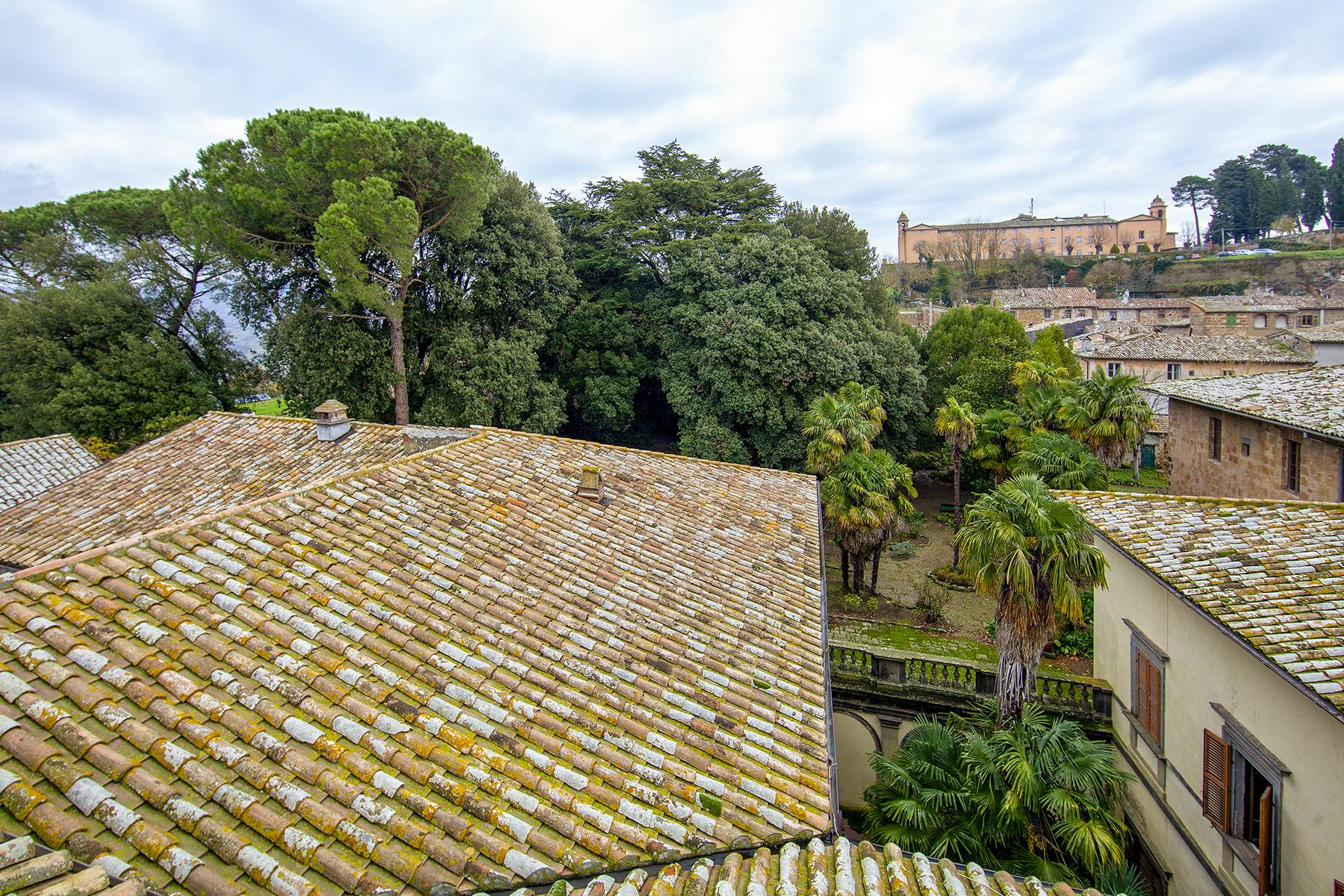 Palazzo in Vendita a Acquapendente: 5 locali, 3000 mq - Foto 12