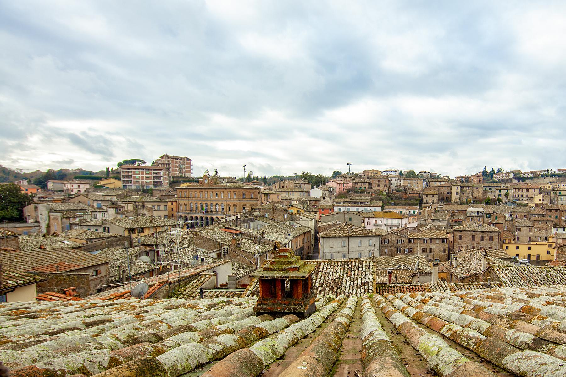 Palazzo in Vendita a Acquapendente: 5 locali, 3000 mq - Foto 14