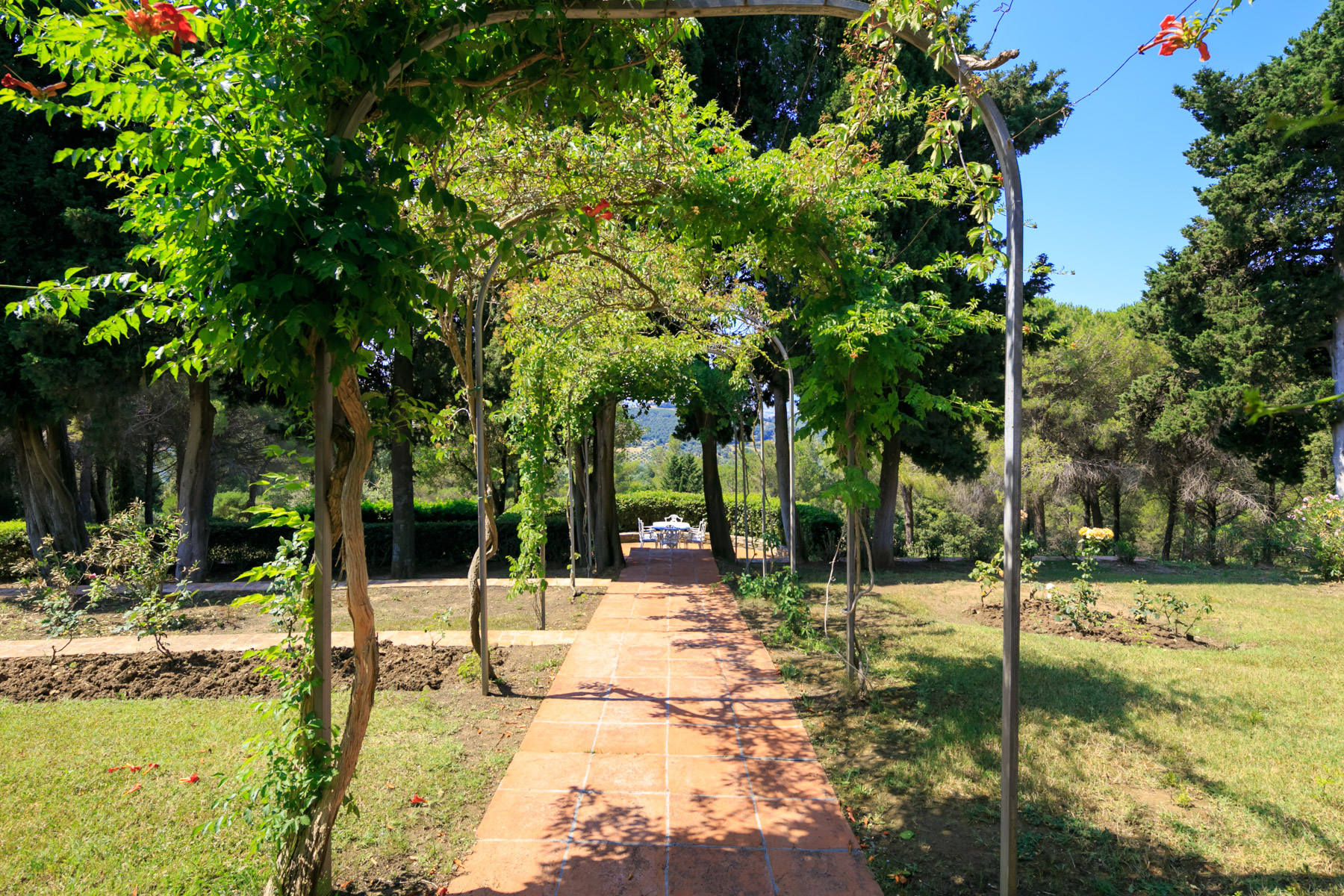 Villa in Vendita a Campiglia Marittima: 5 locali, 1100 mq - Foto 10