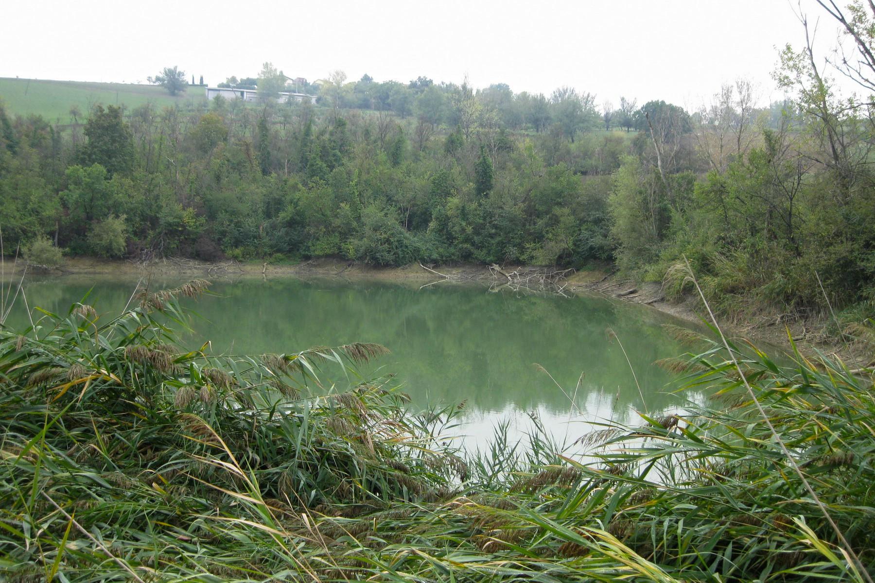 Rustico in Vendita a Castelvetro Di Modena: 5 locali, 3100 mq - Foto 3