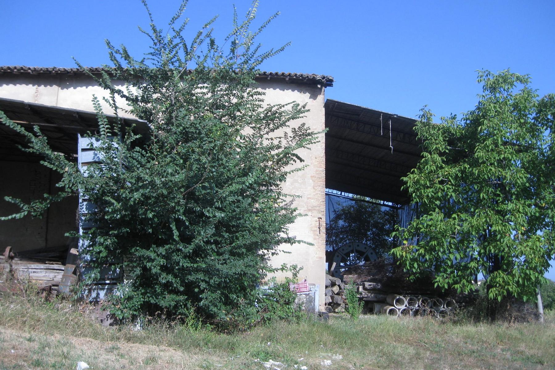 Rustico in Vendita a Castelvetro Di Modena: 5 locali, 3100 mq - Foto 7