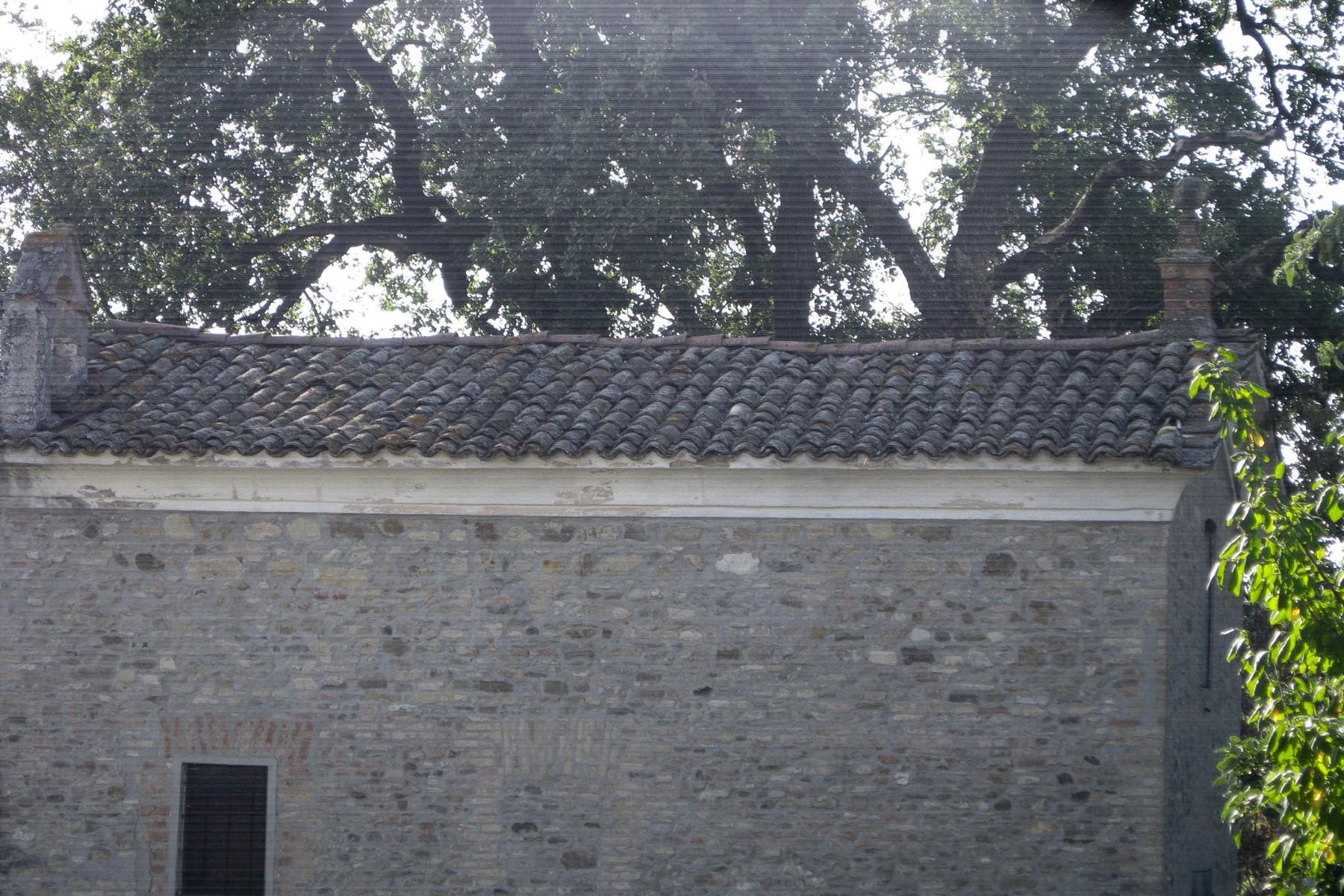 Rustico in Vendita a Castelvetro Di Modena: 5 locali, 3100 mq - Foto 8