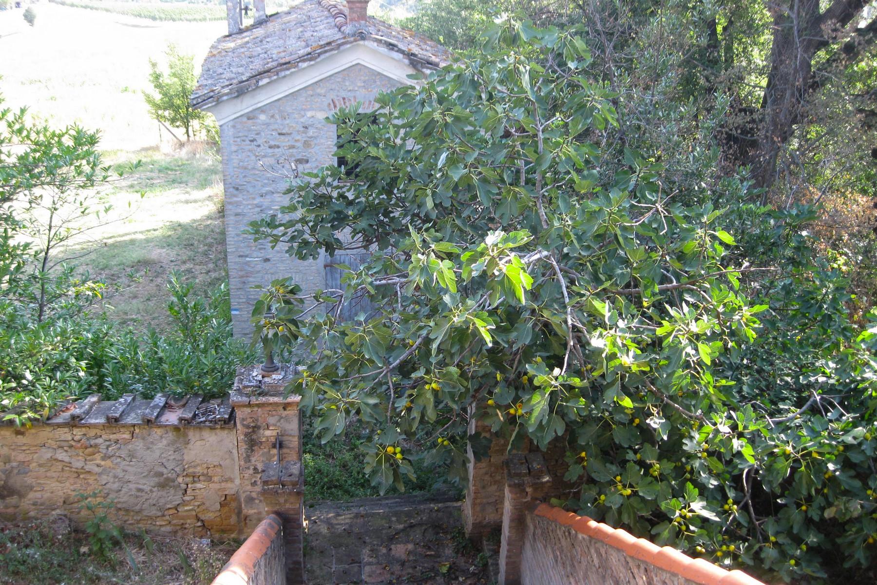 Rustico in Vendita a Castelvetro Di Modena: 5 locali, 3100 mq - Foto 9