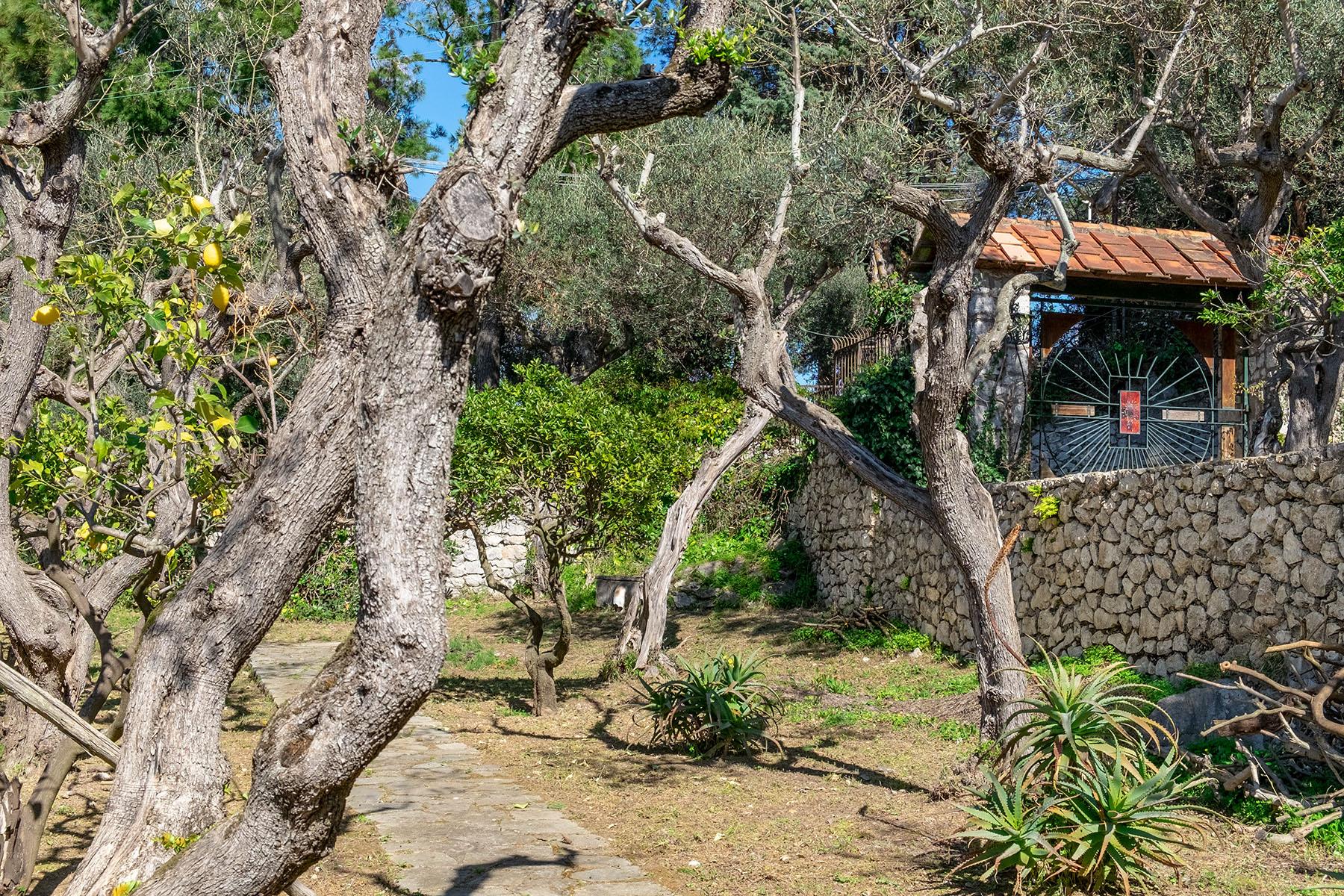 Villa in Vendita a Capri: 5 locali, 250 mq - Foto 30