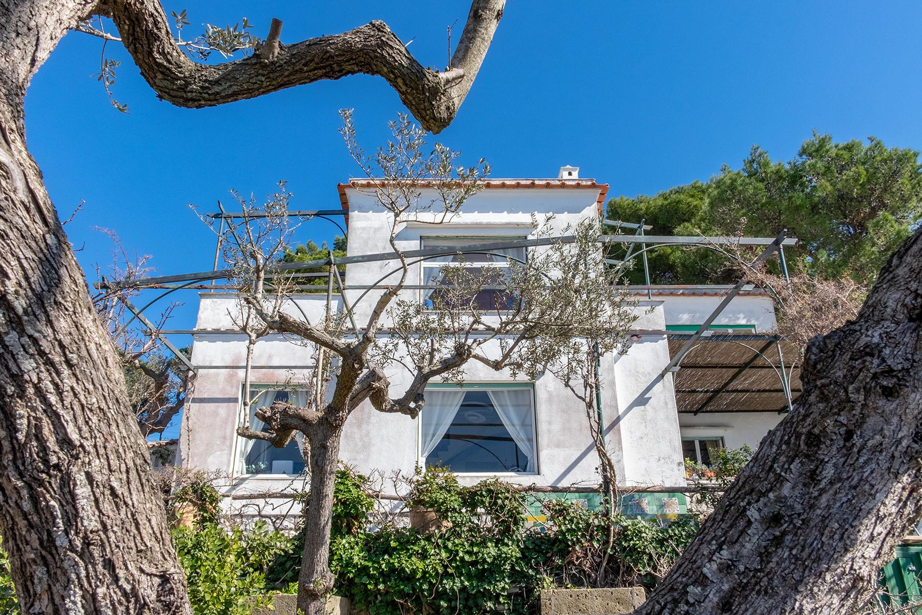 Villa in Vendita a Capri: 5 locali, 250 mq - Foto 24