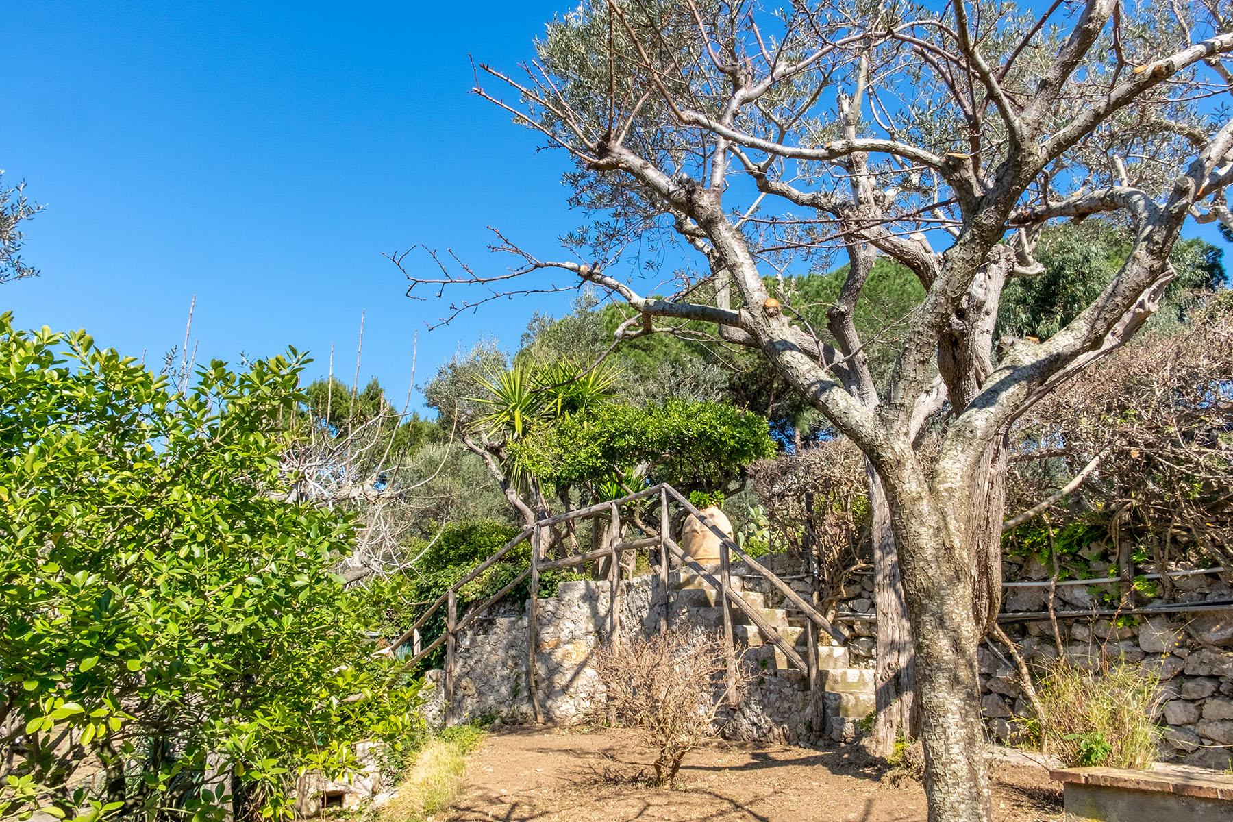 Villa in Vendita a Capri: 5 locali, 250 mq - Foto 21